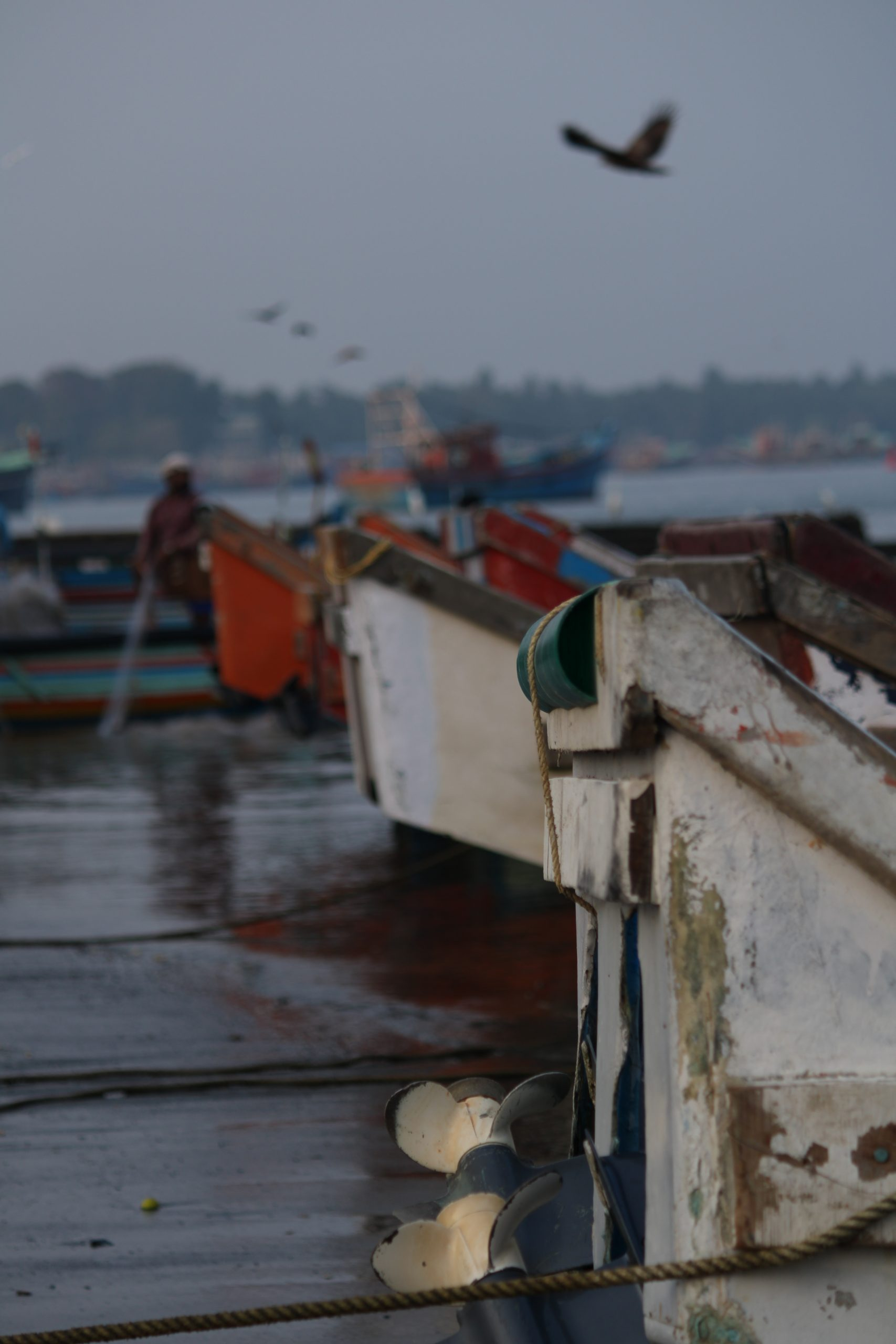 Boat parked near sea