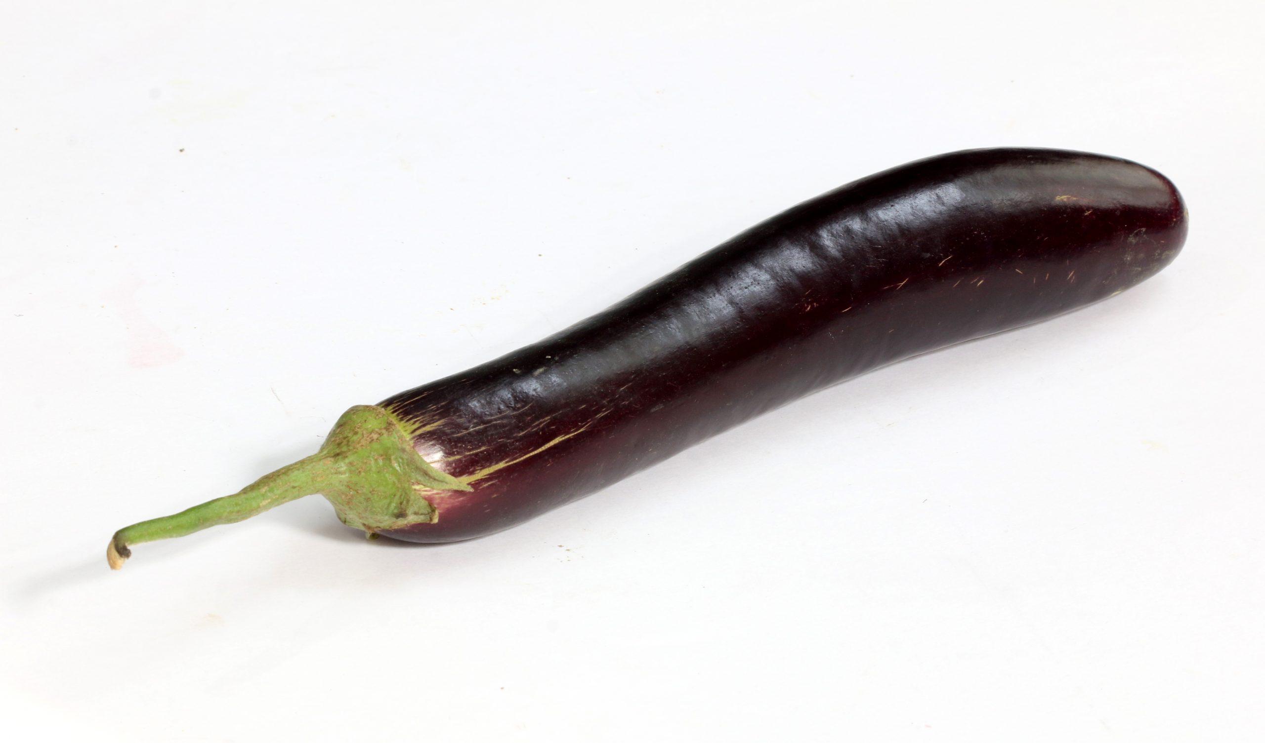 brinjal vegetable