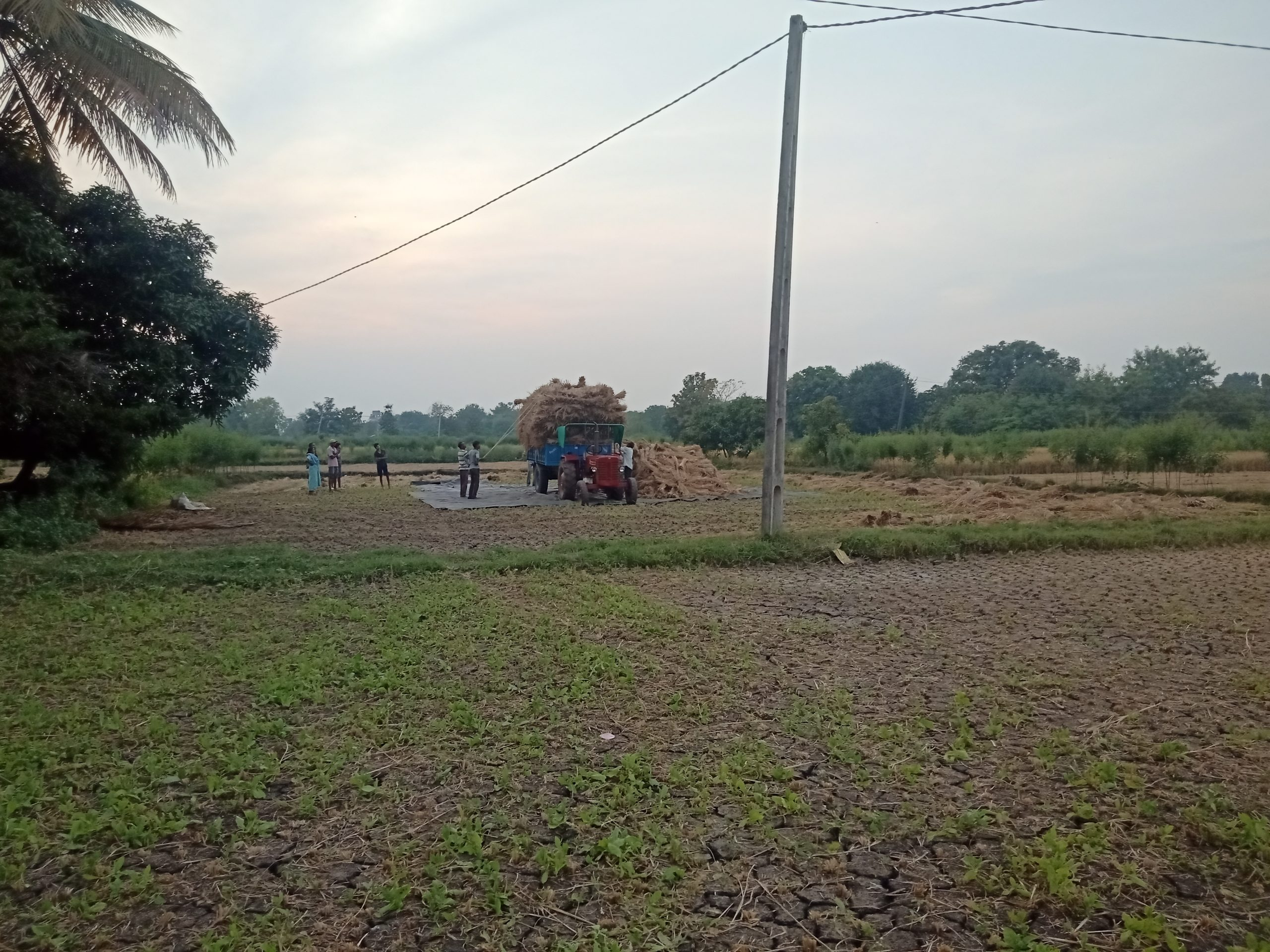 Farmers with a tractor