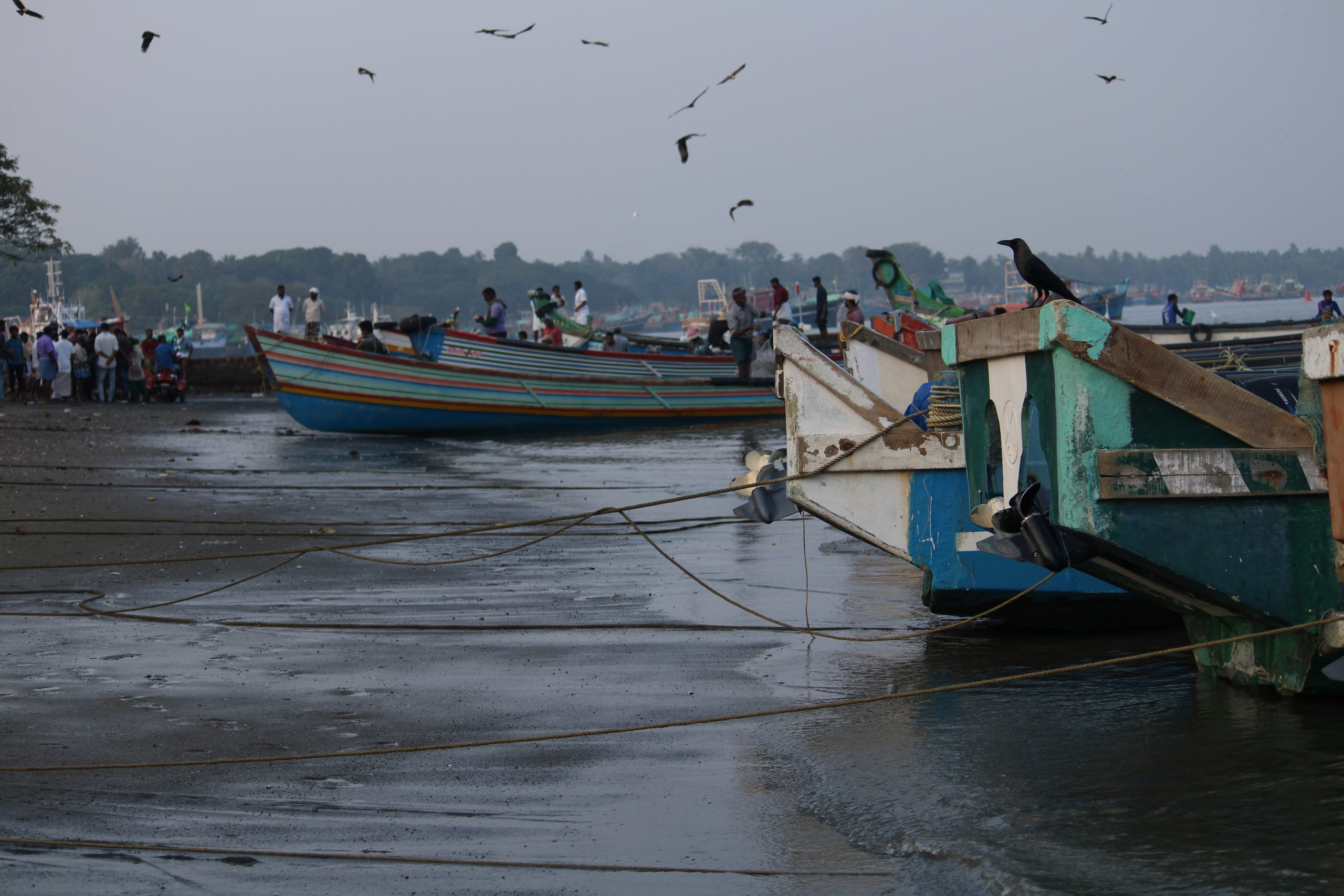 Fishing boats parked near the Sea