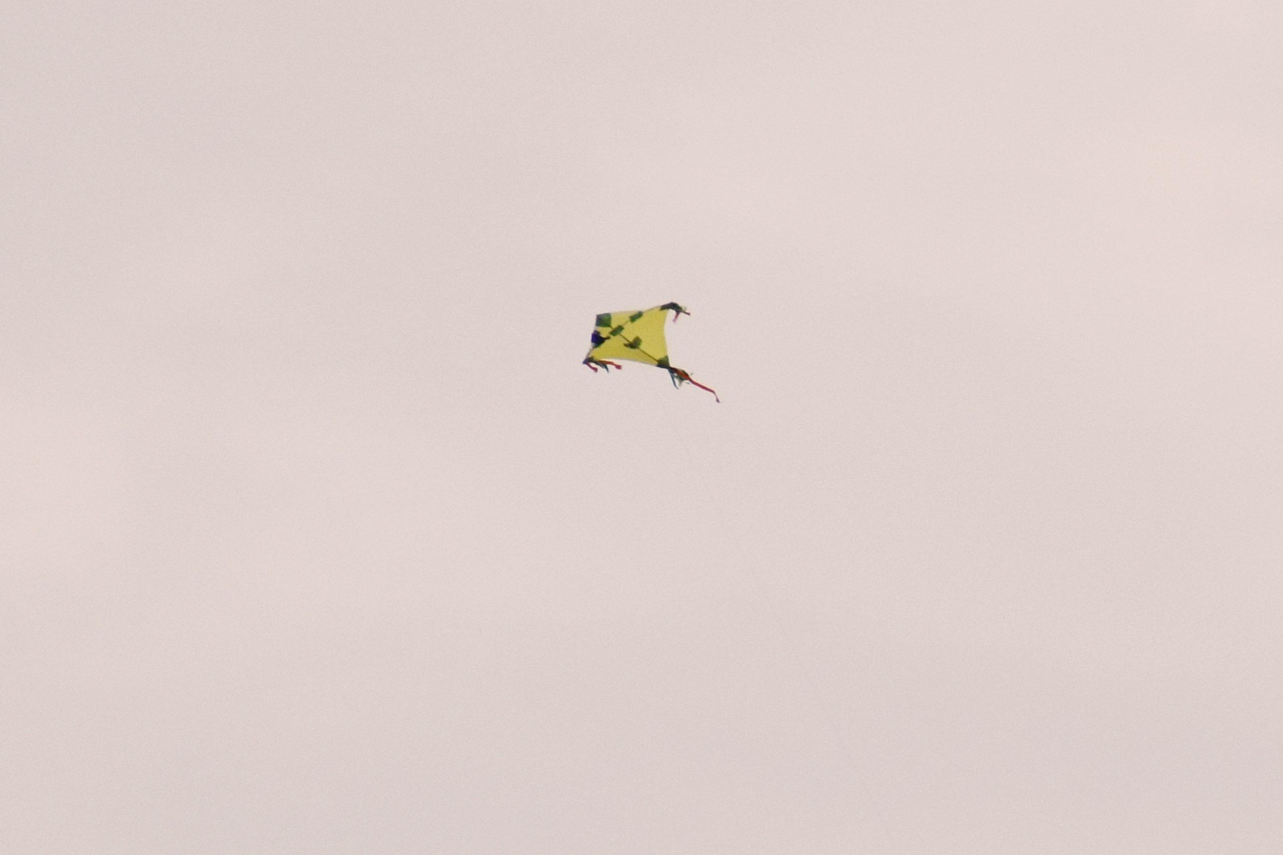 Flying kite in the sky