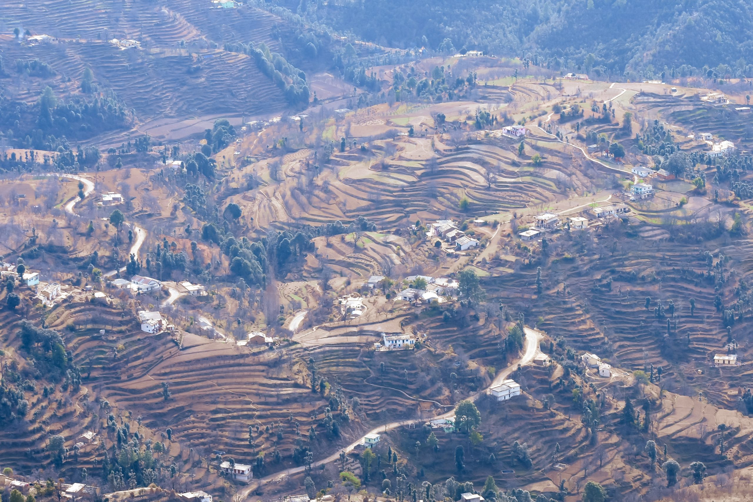 Houses and fields in Muketshwer, Nainital