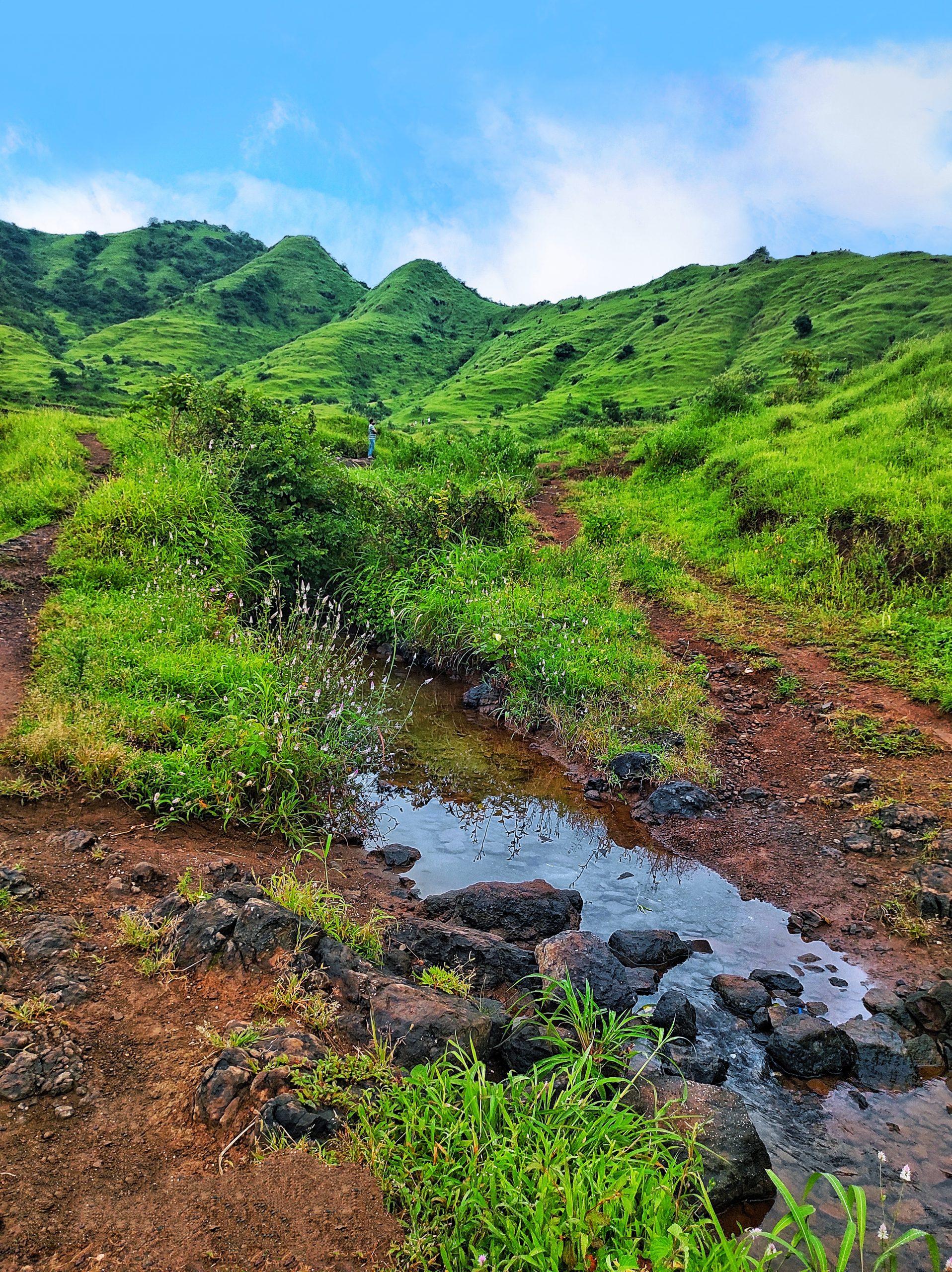 Beautiful green valley