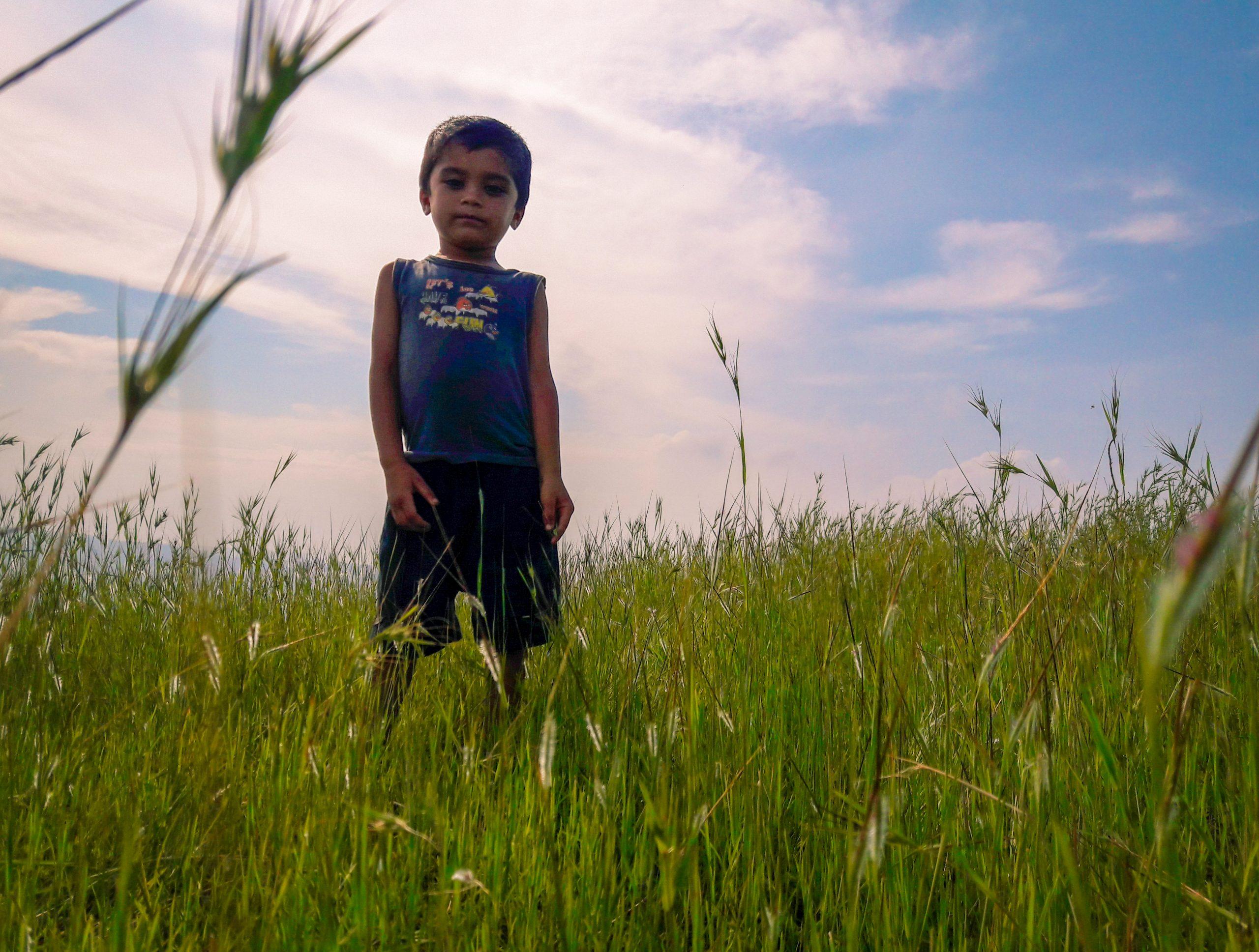 Kid standing in farm