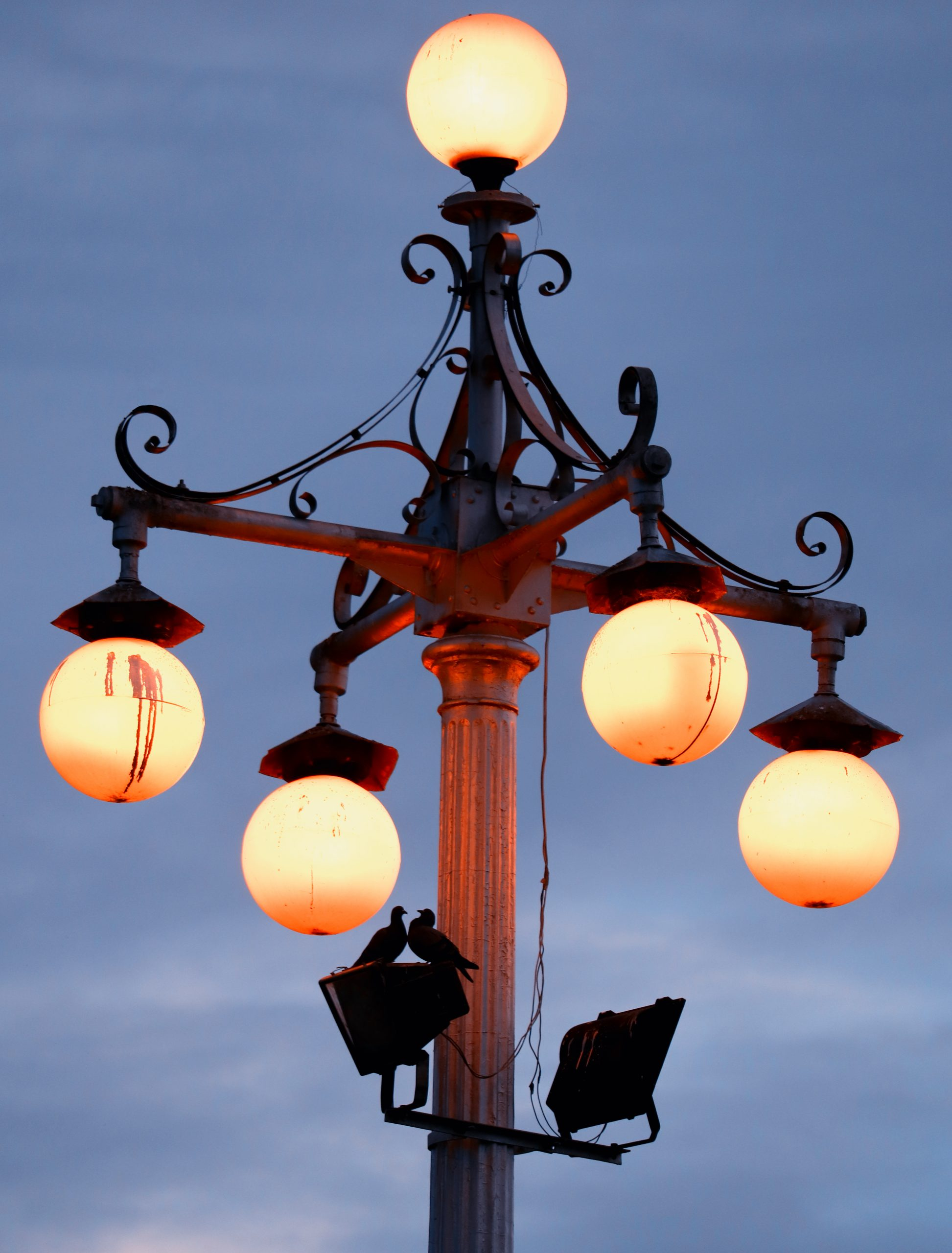 Bulbs of a light pole