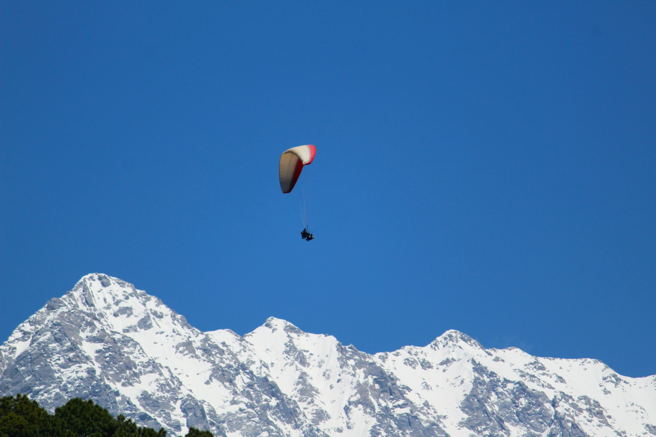 Paragliding over snowy dhauladhar mountains