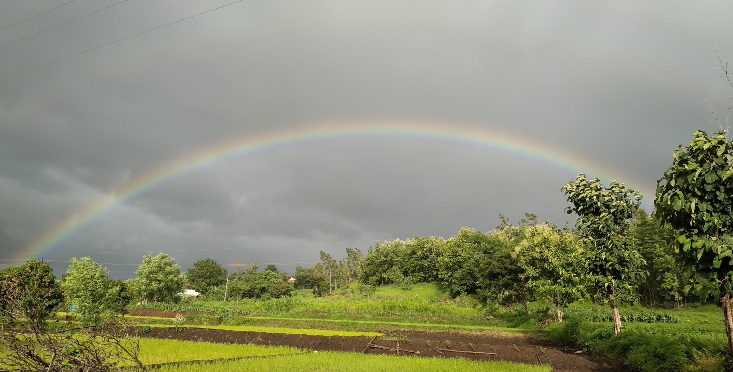 Rainbow formed over agriculture land