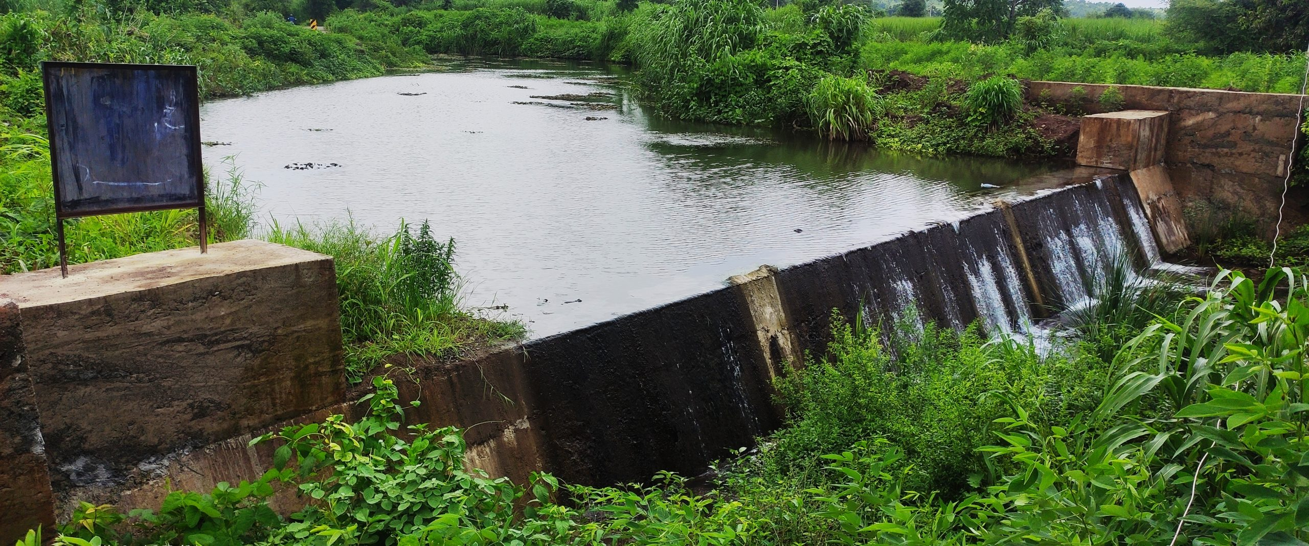 Dam in the midst of forest