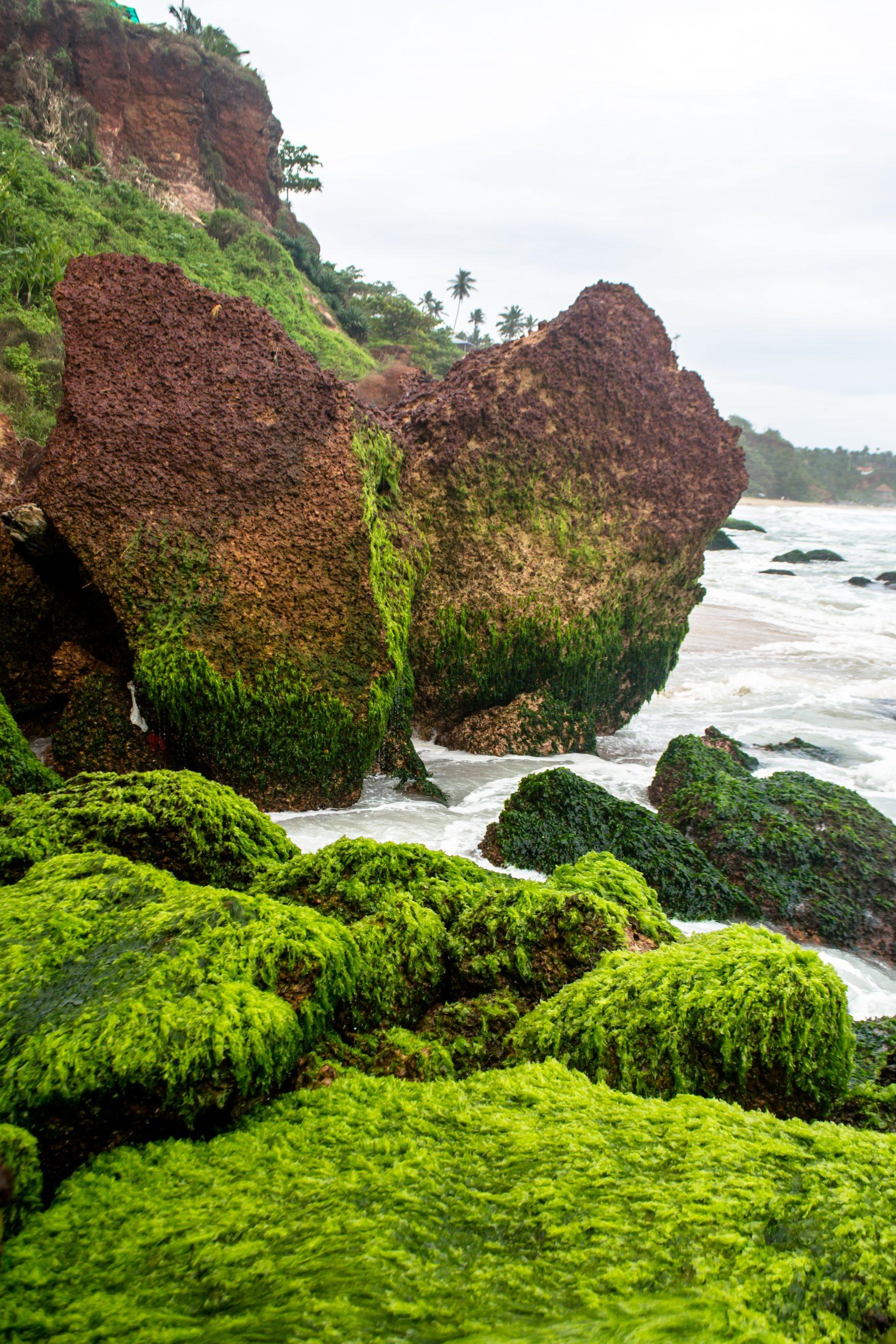 Rocks on Varkala beach