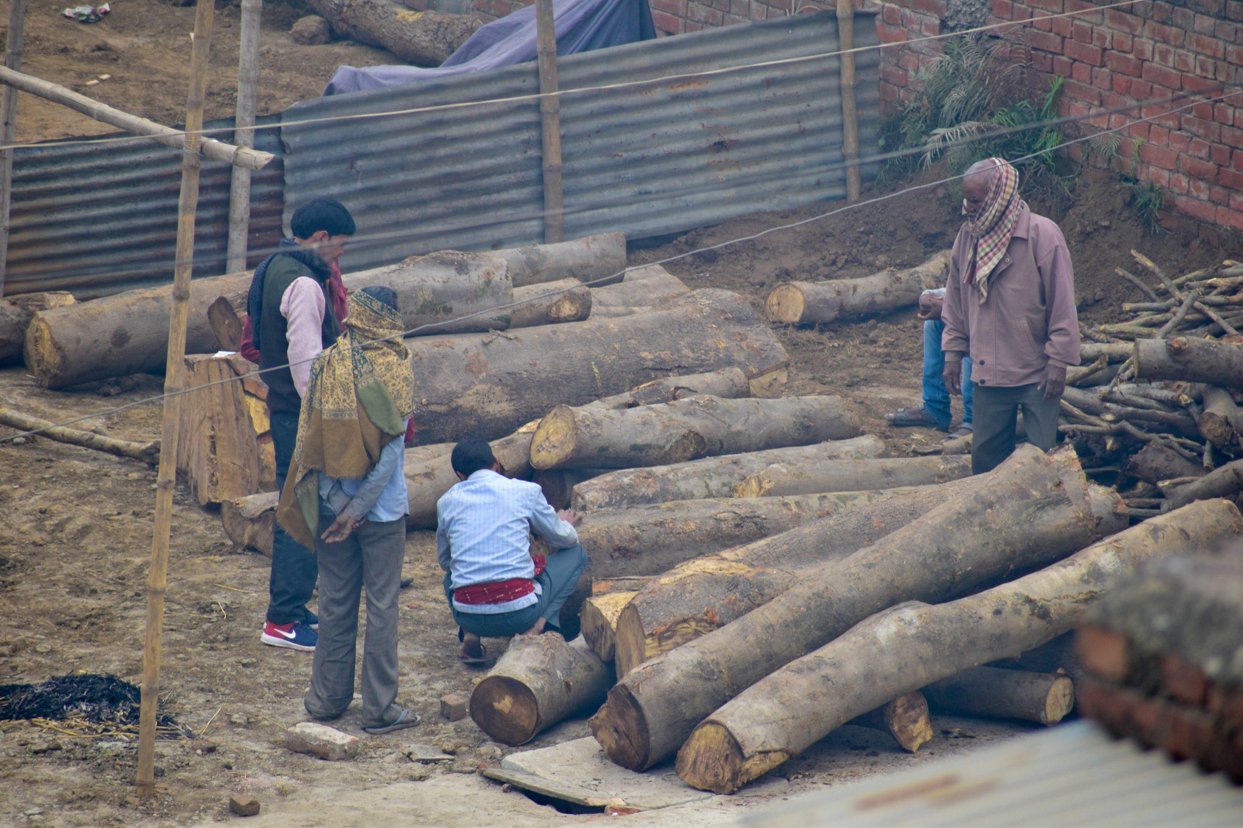 Worker working in sawmill