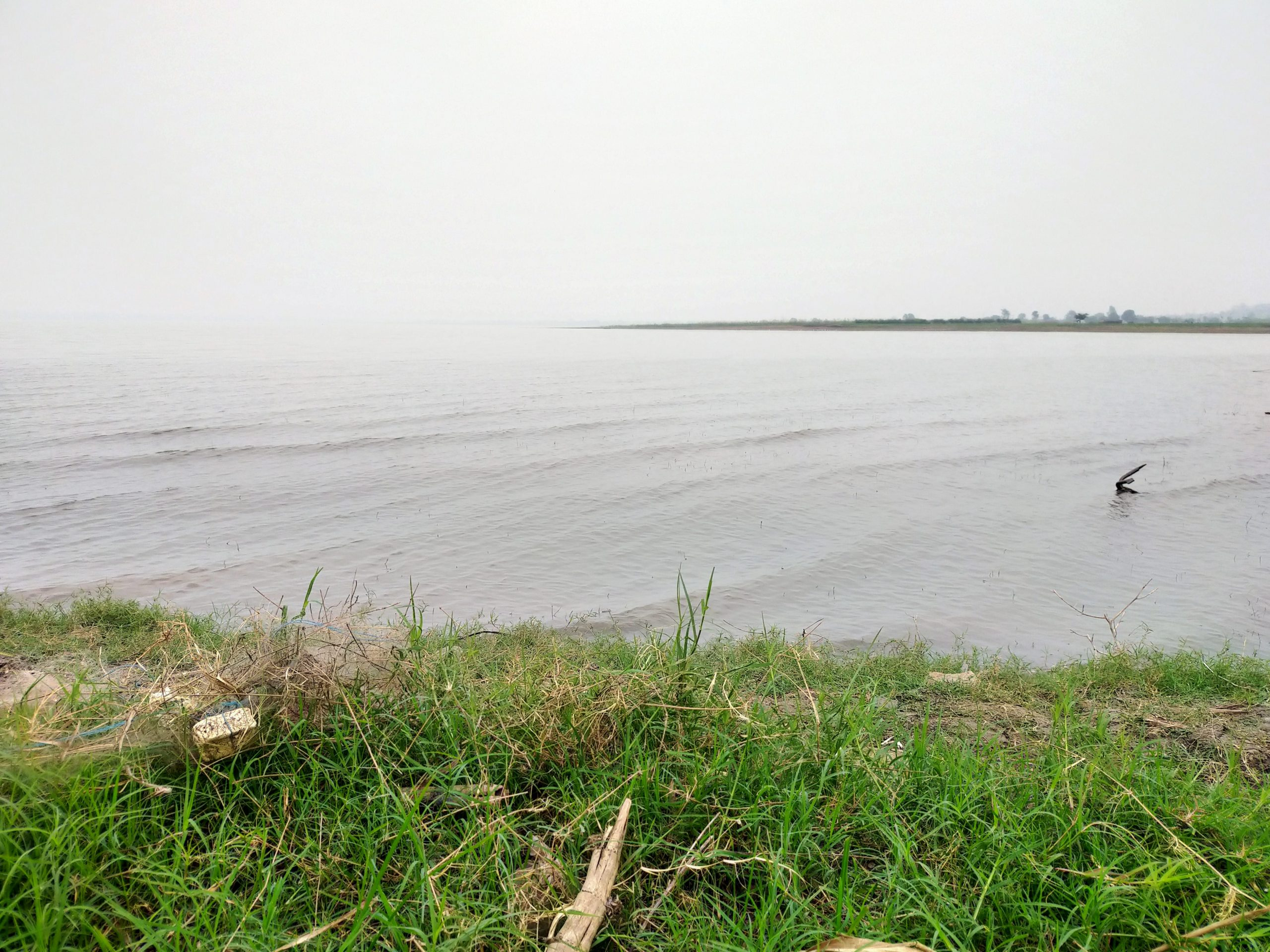 Shore of a water resource