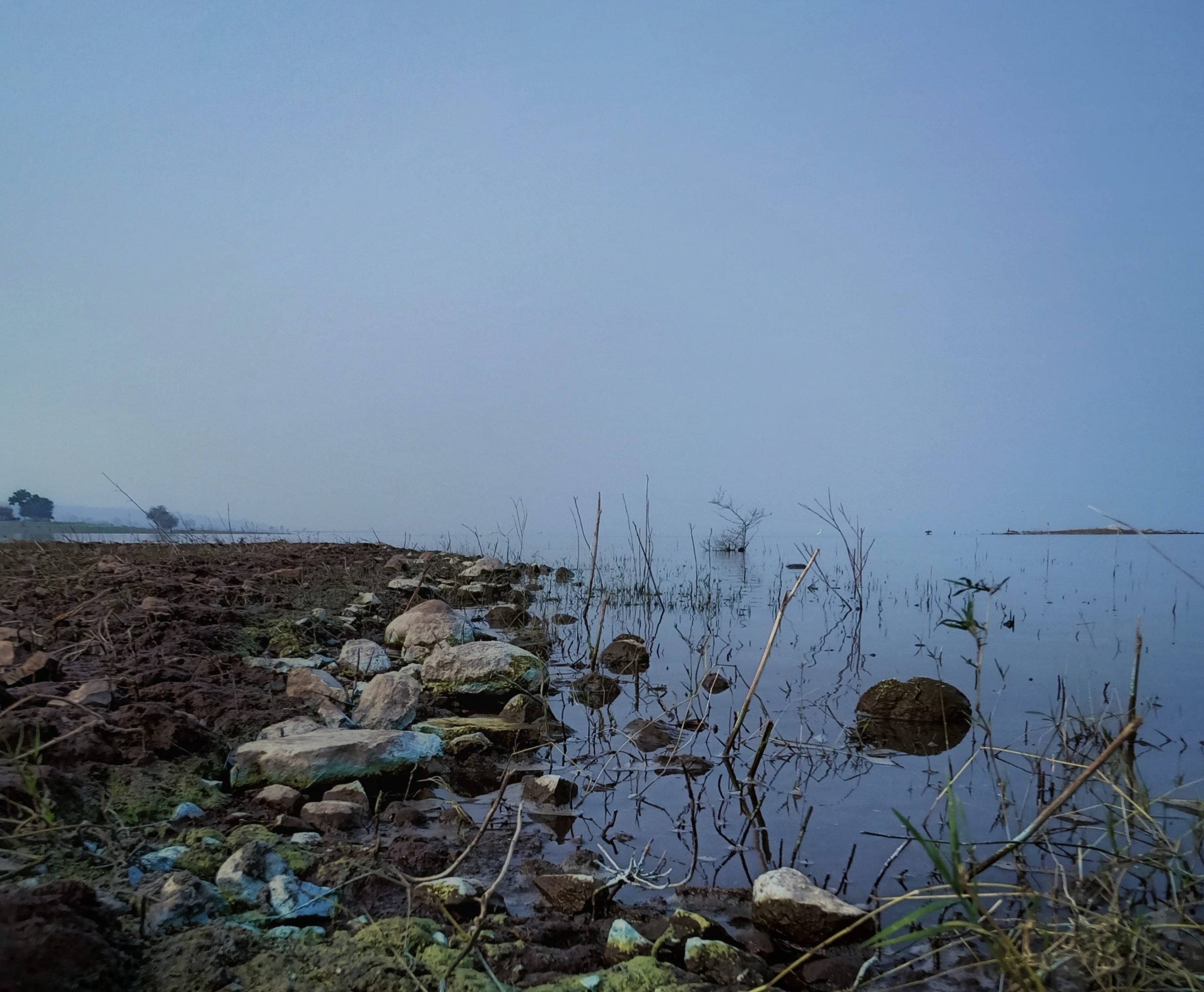 Stones and mud on a seashore