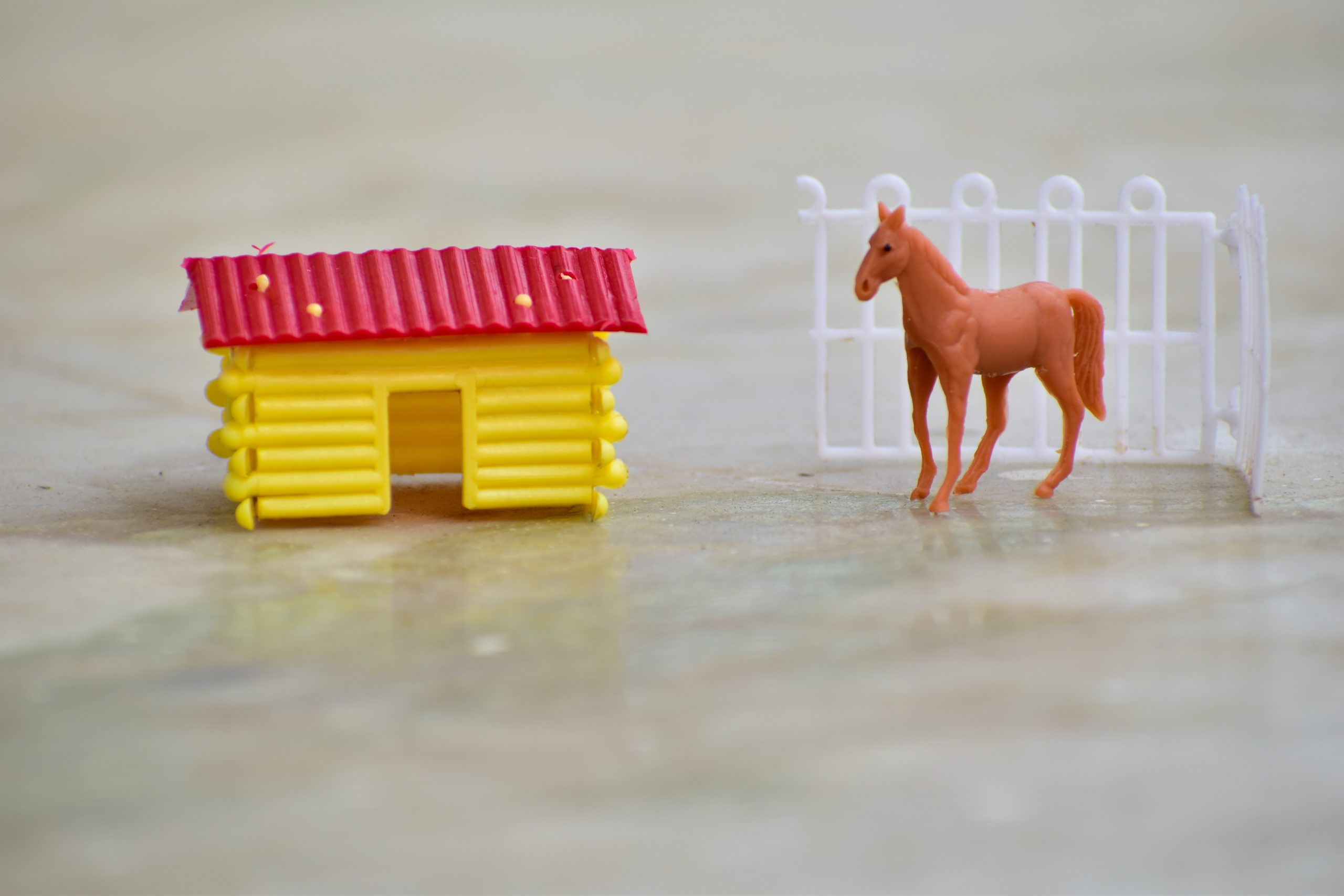 Toy horse and house