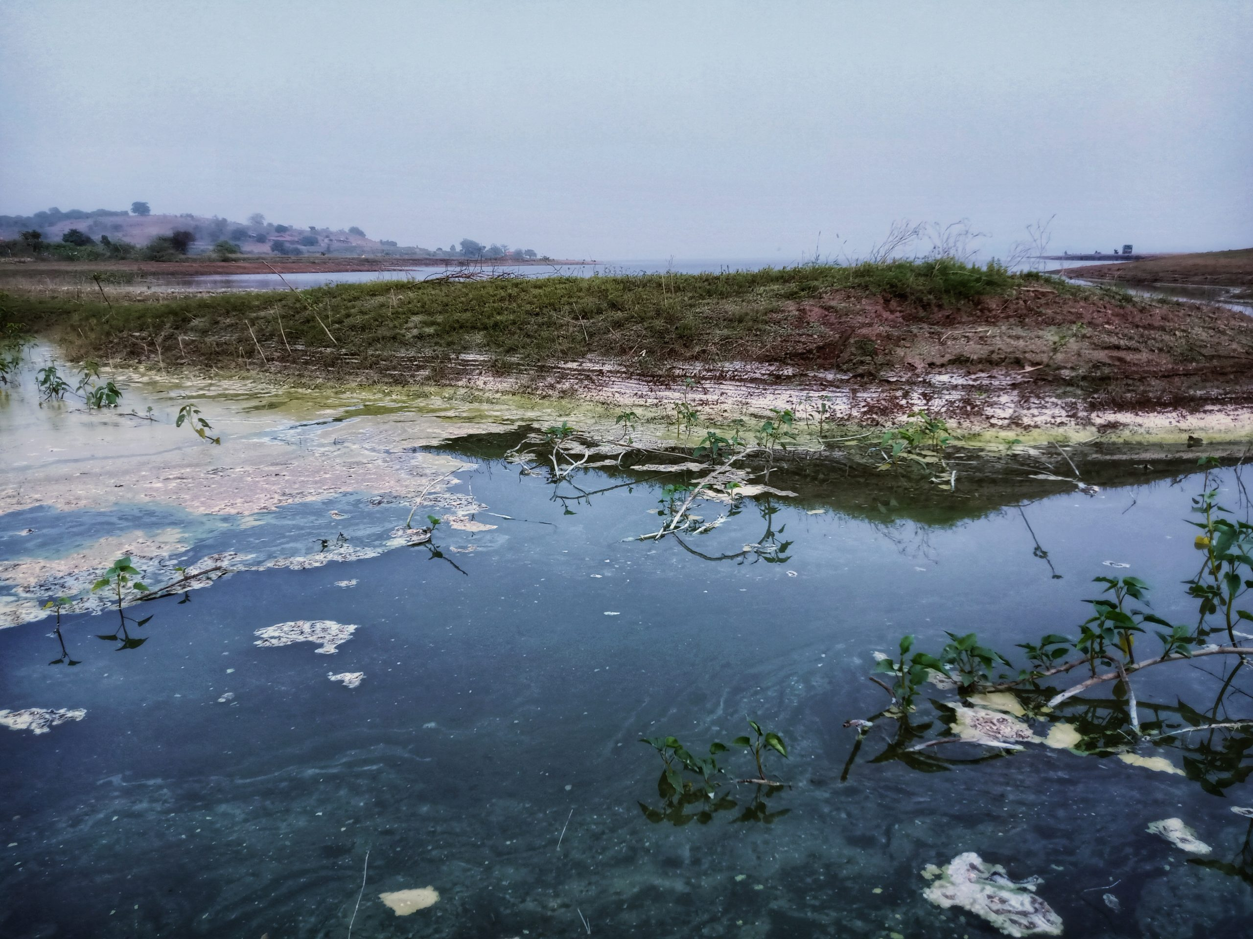 Landscape of a polluted lake