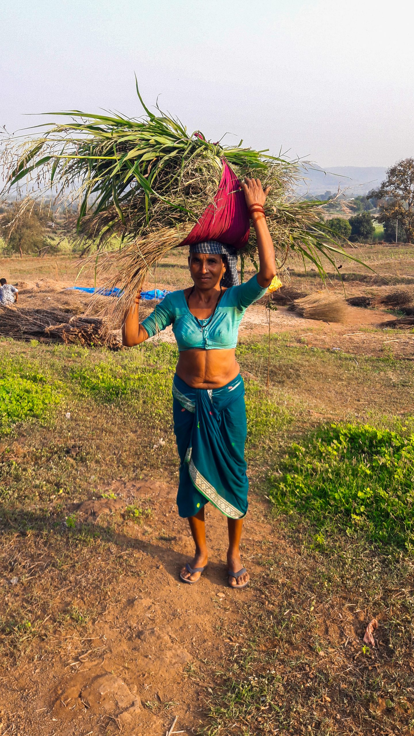 A village woman carrying grass for animals