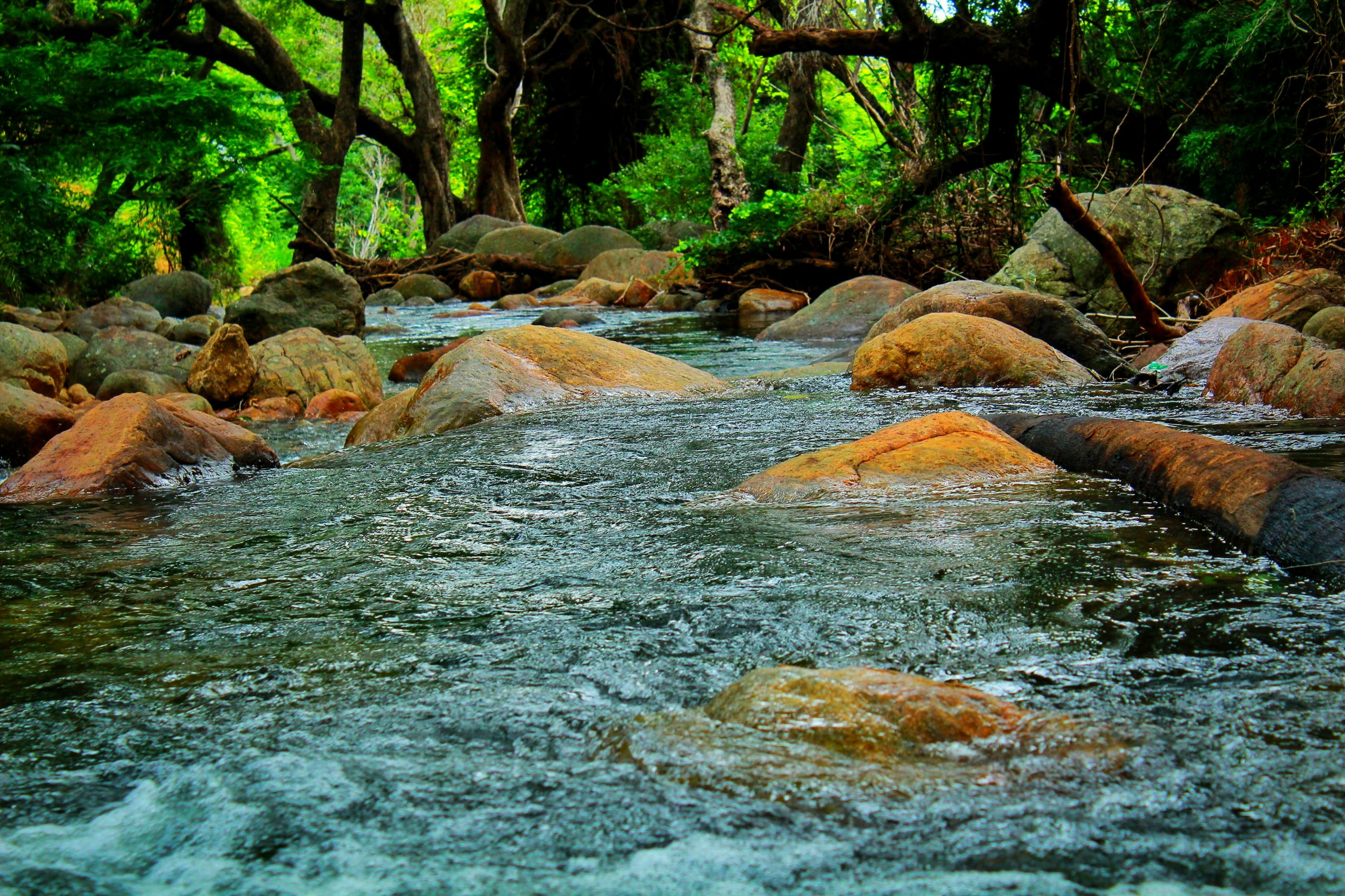 a river of flowing water
