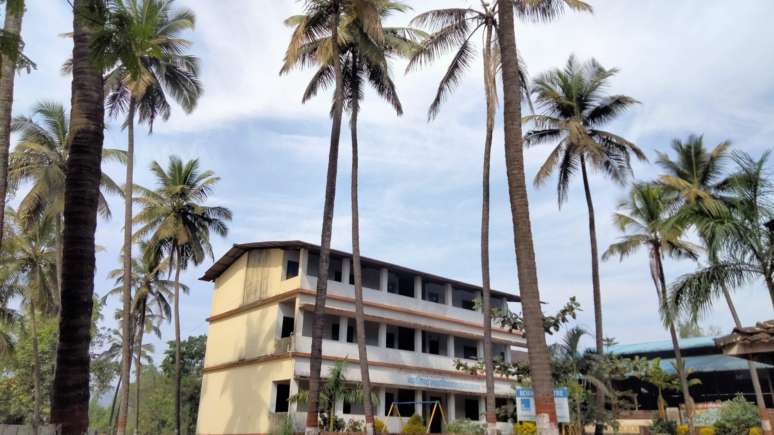 School view through coconut trees