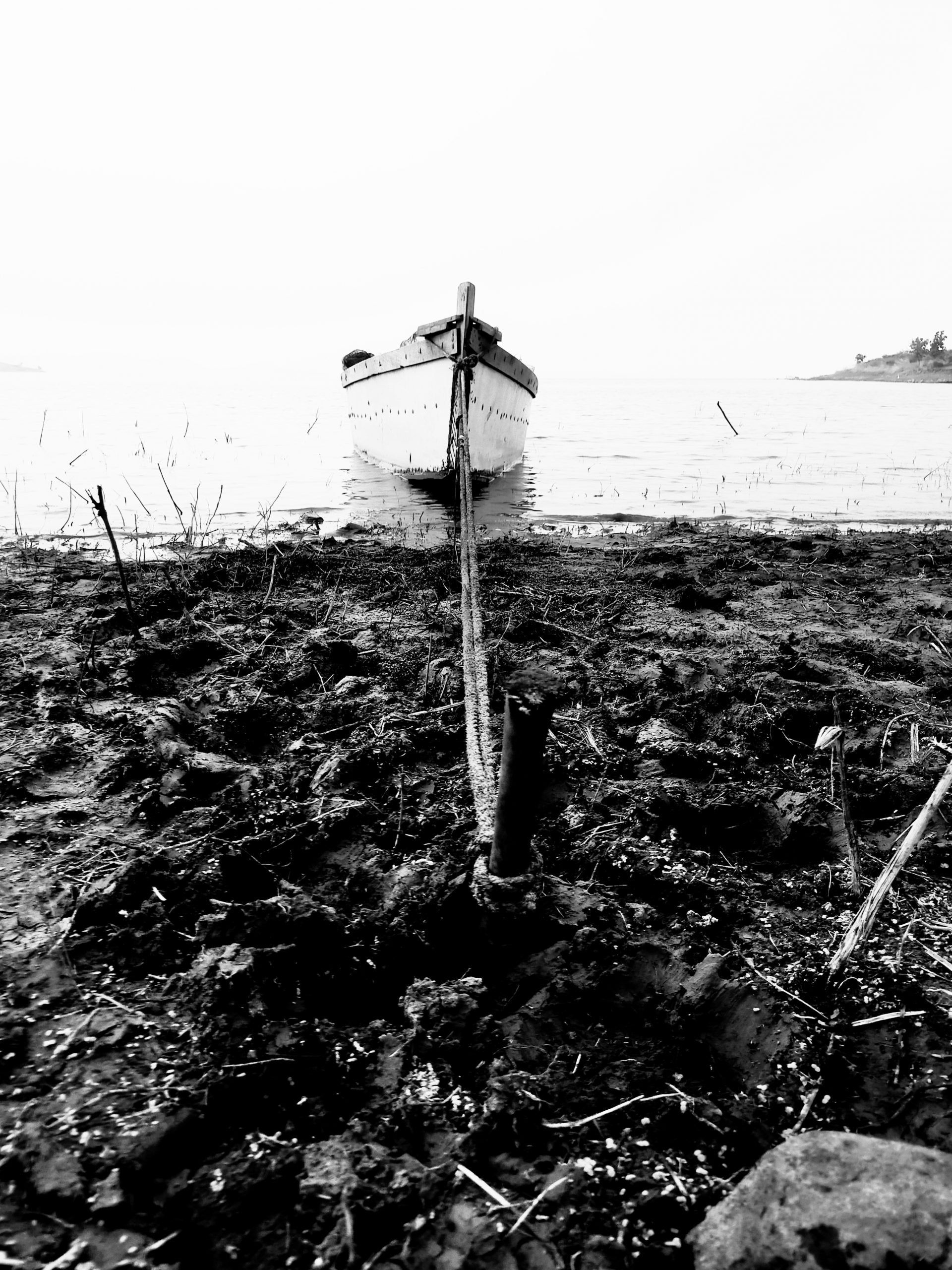 A boat tied to shore