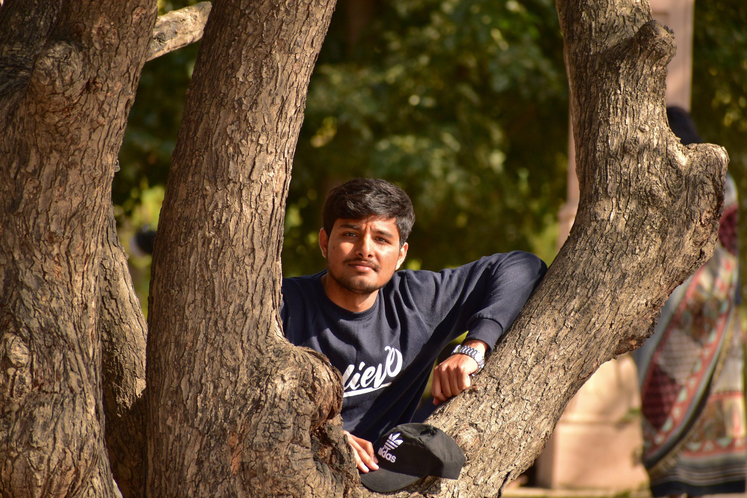 A boy on a tree