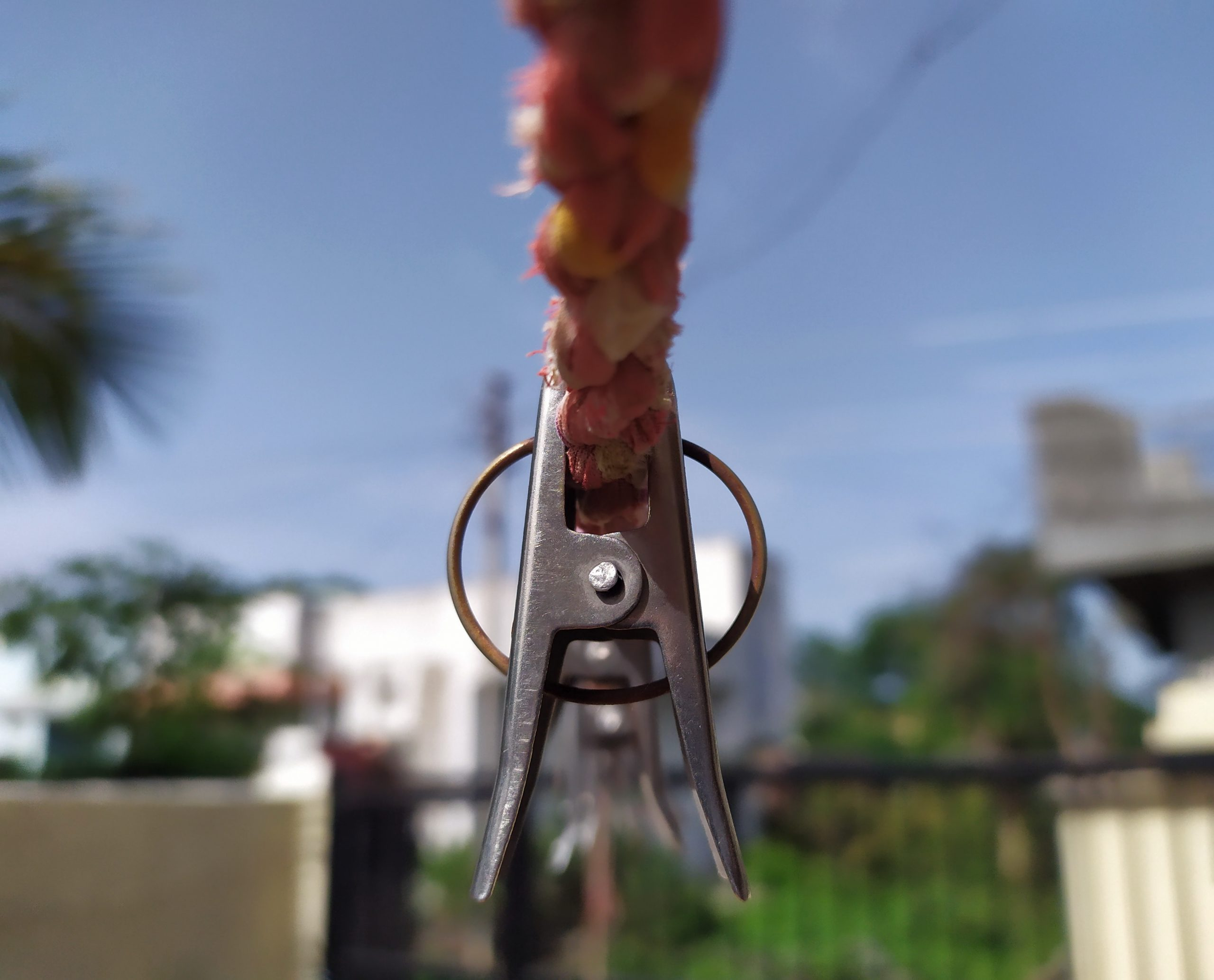 A cloth clip