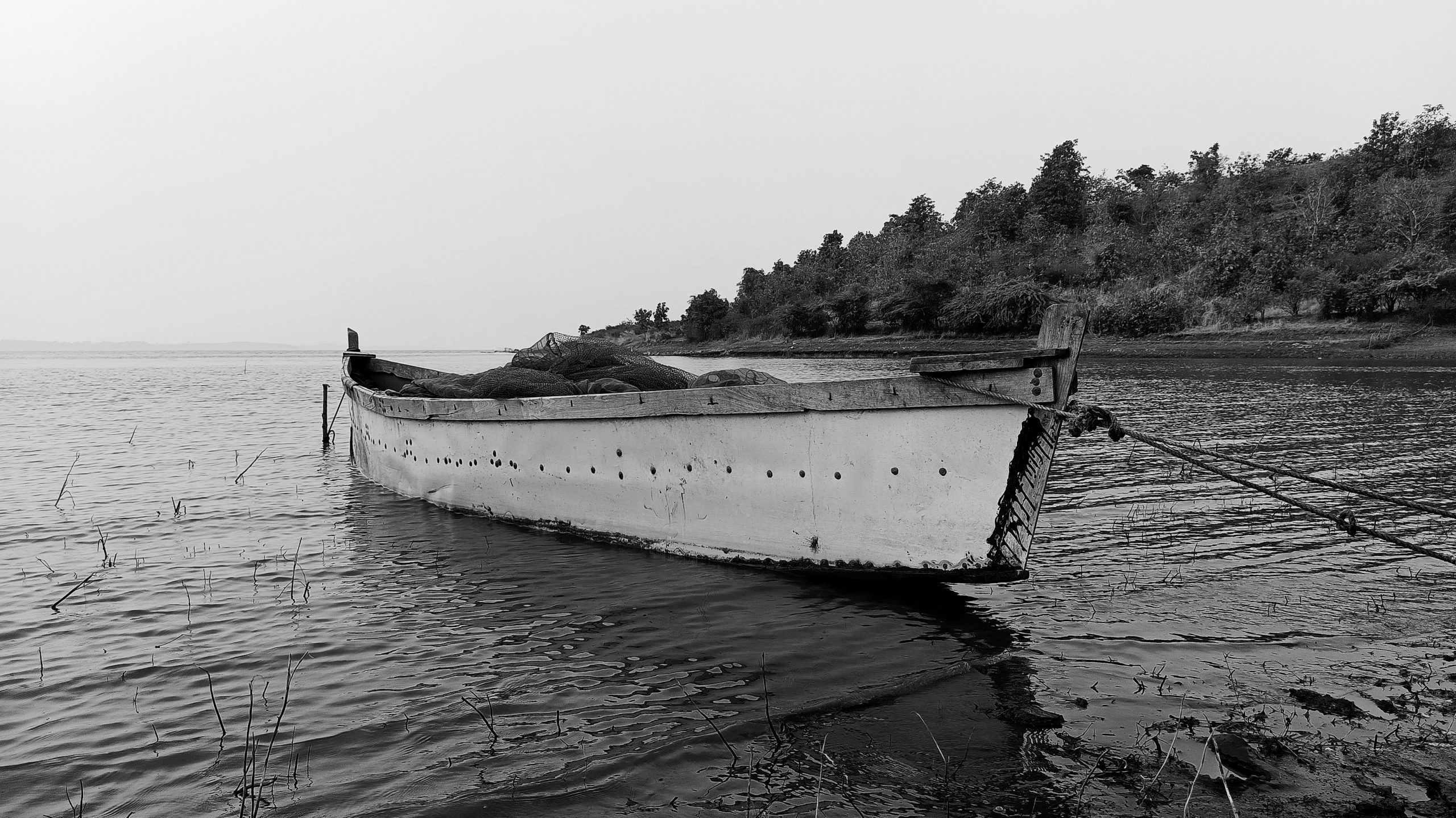 A fishing boat tied to shore