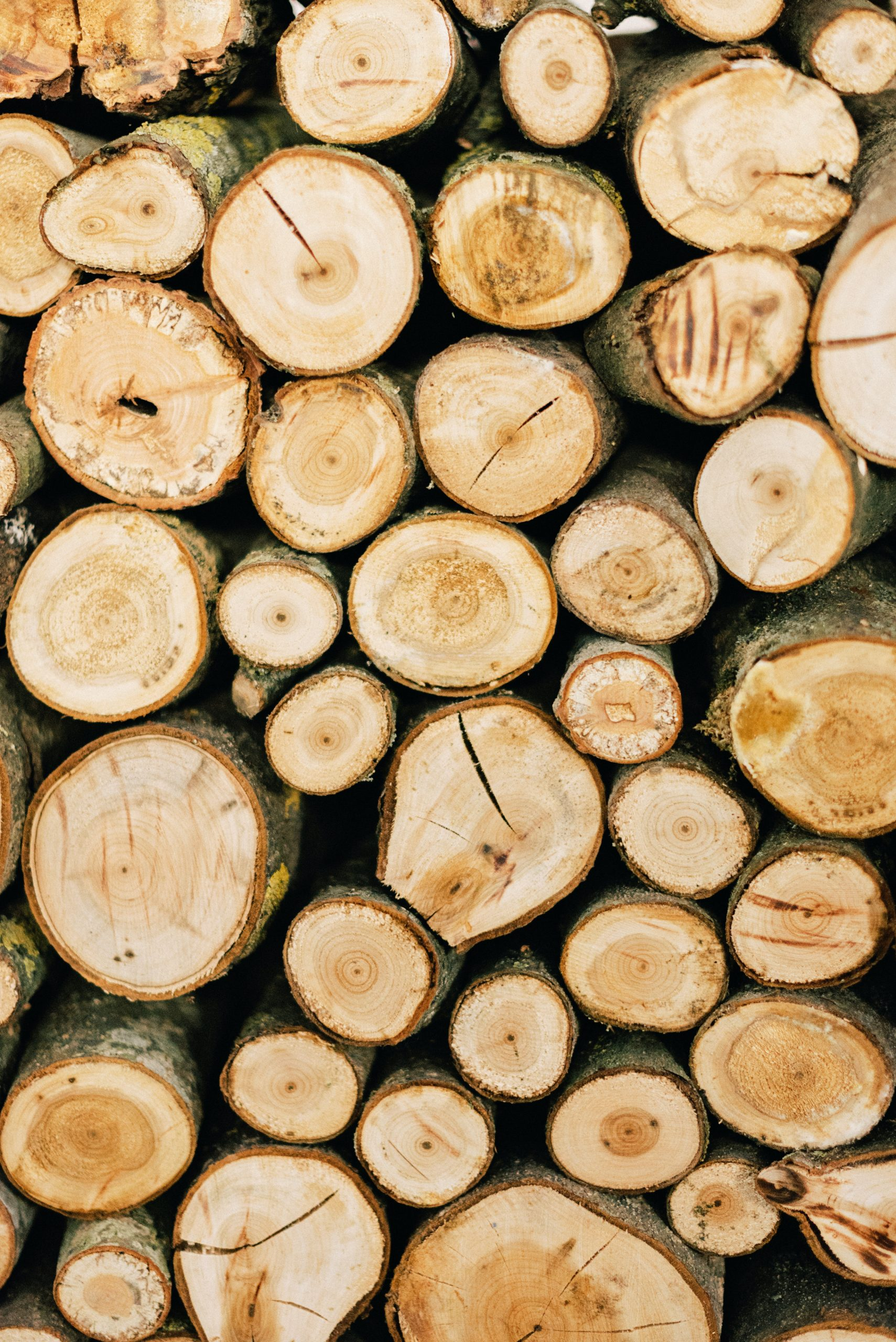 A stack of wood logs