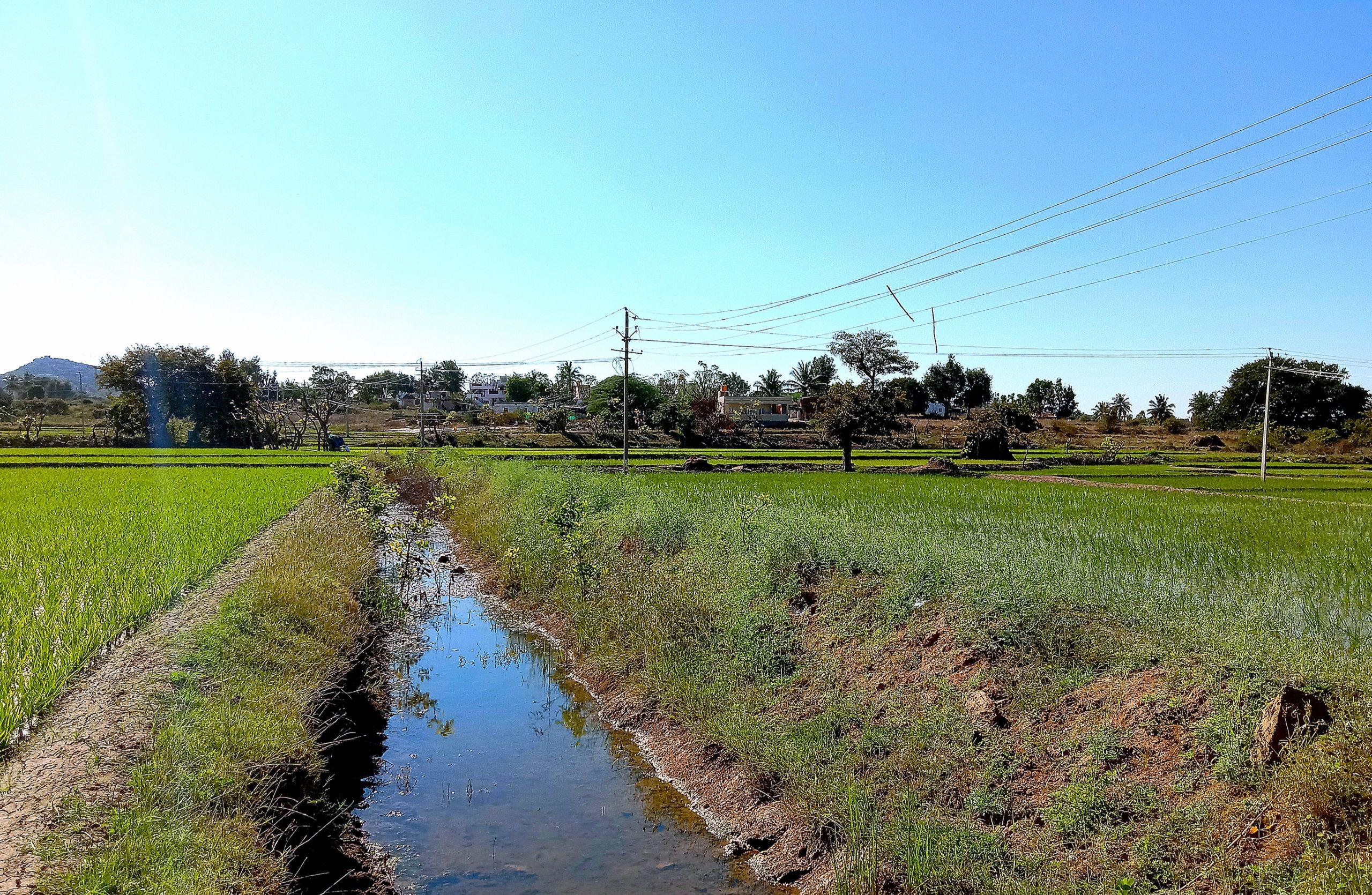A water way in fields