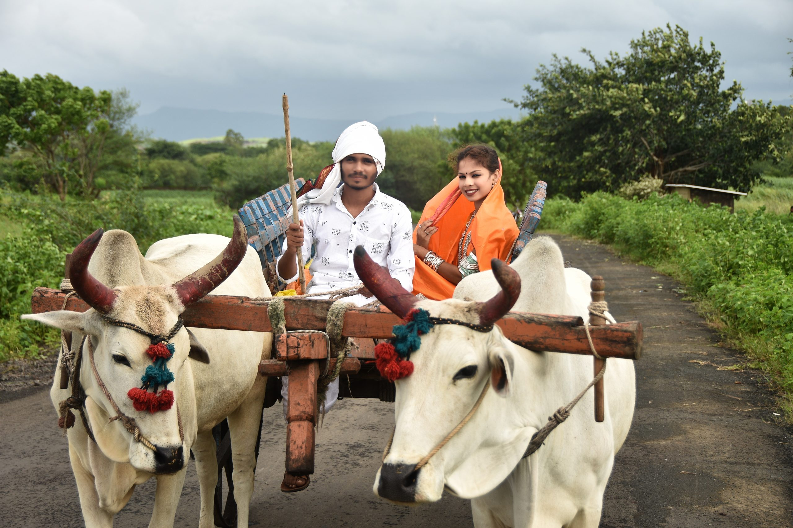 A village couple traveling on oxcart