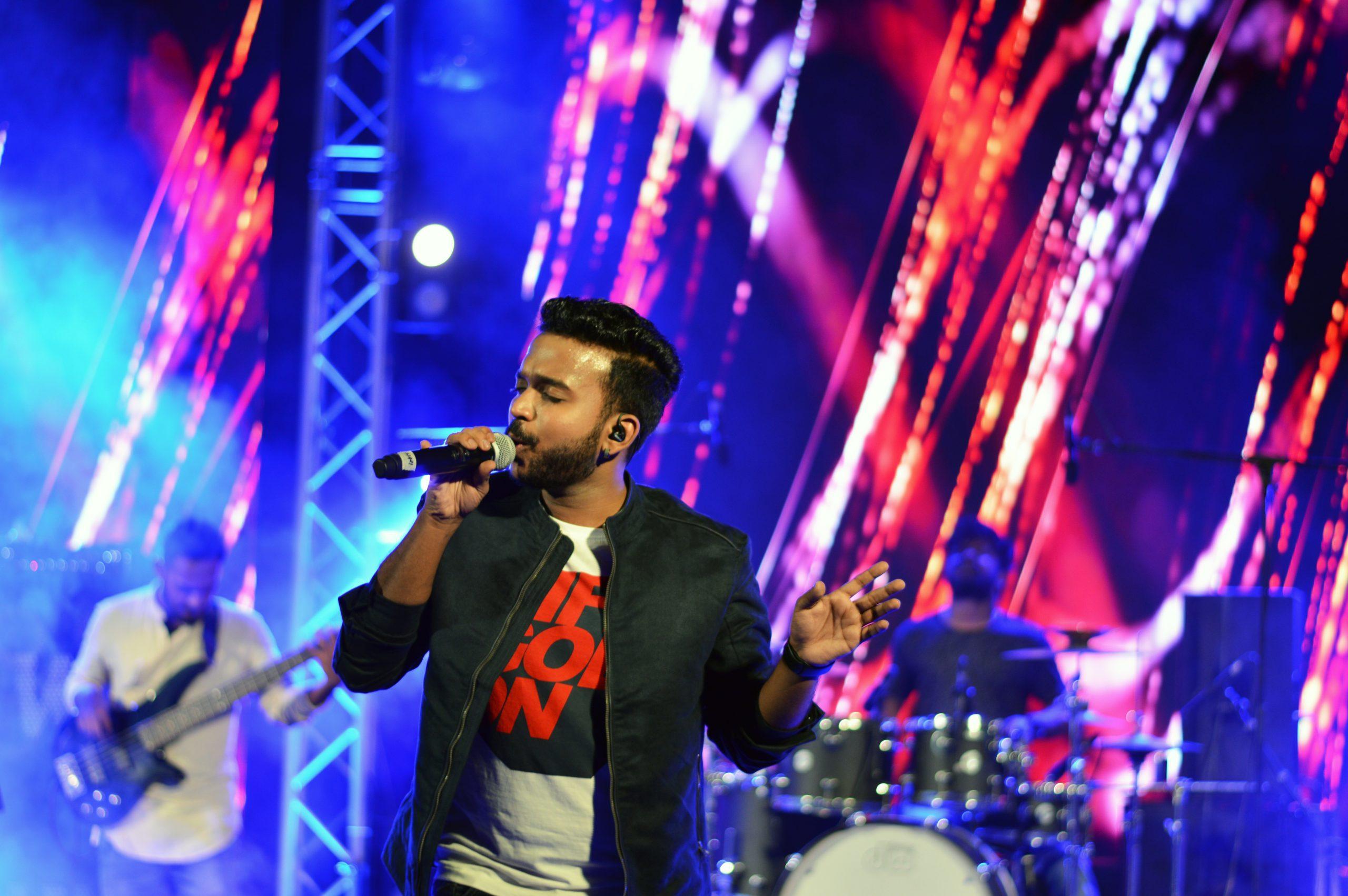An artist at a music concert