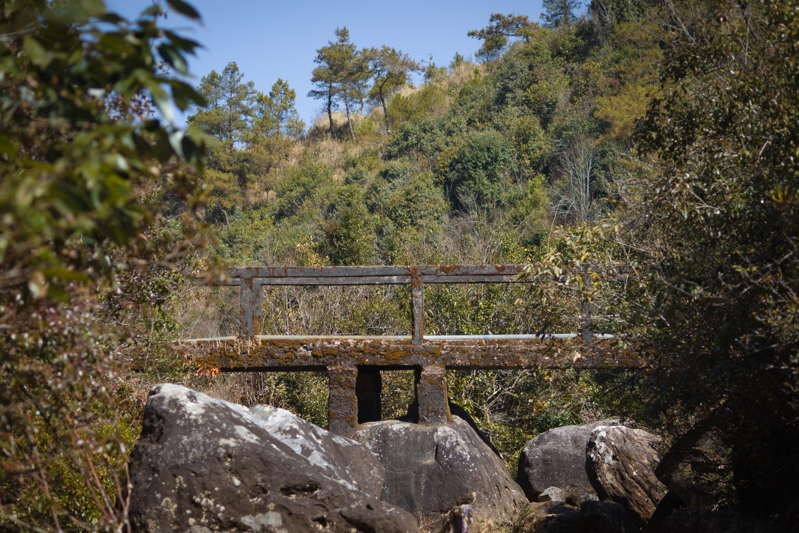An old bridge and rocks in a jungle