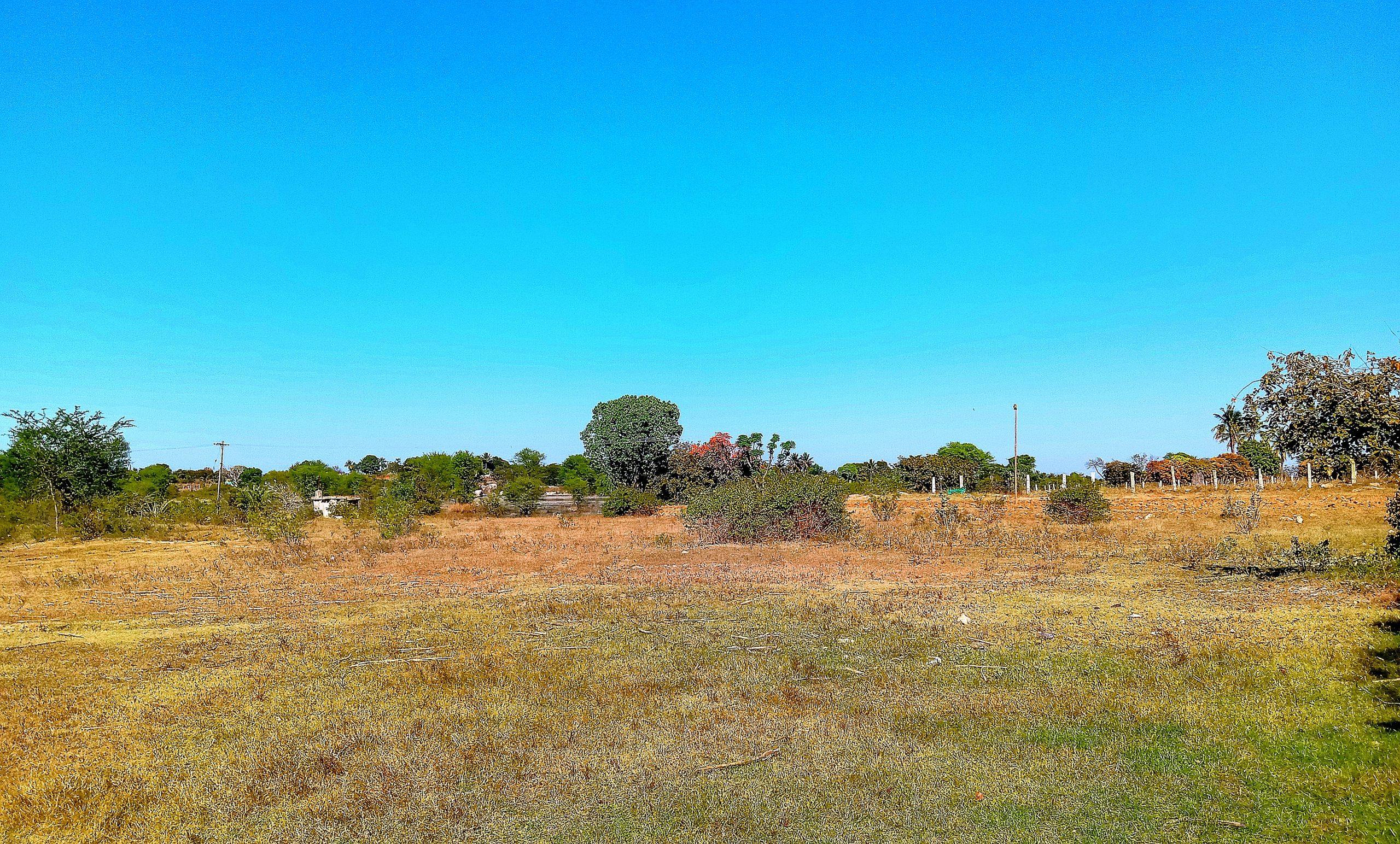 An open land