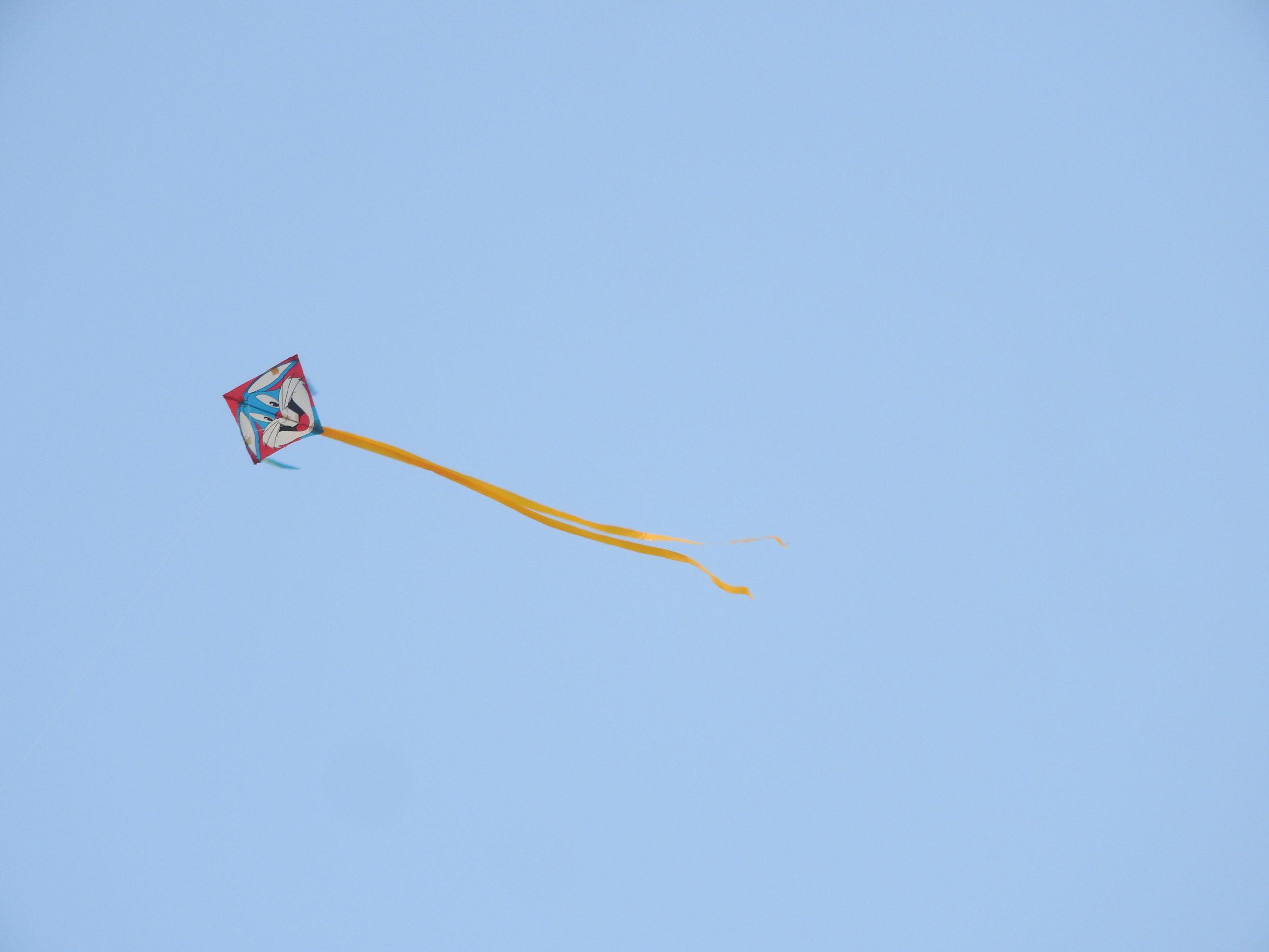 Kite flying high in the sky
