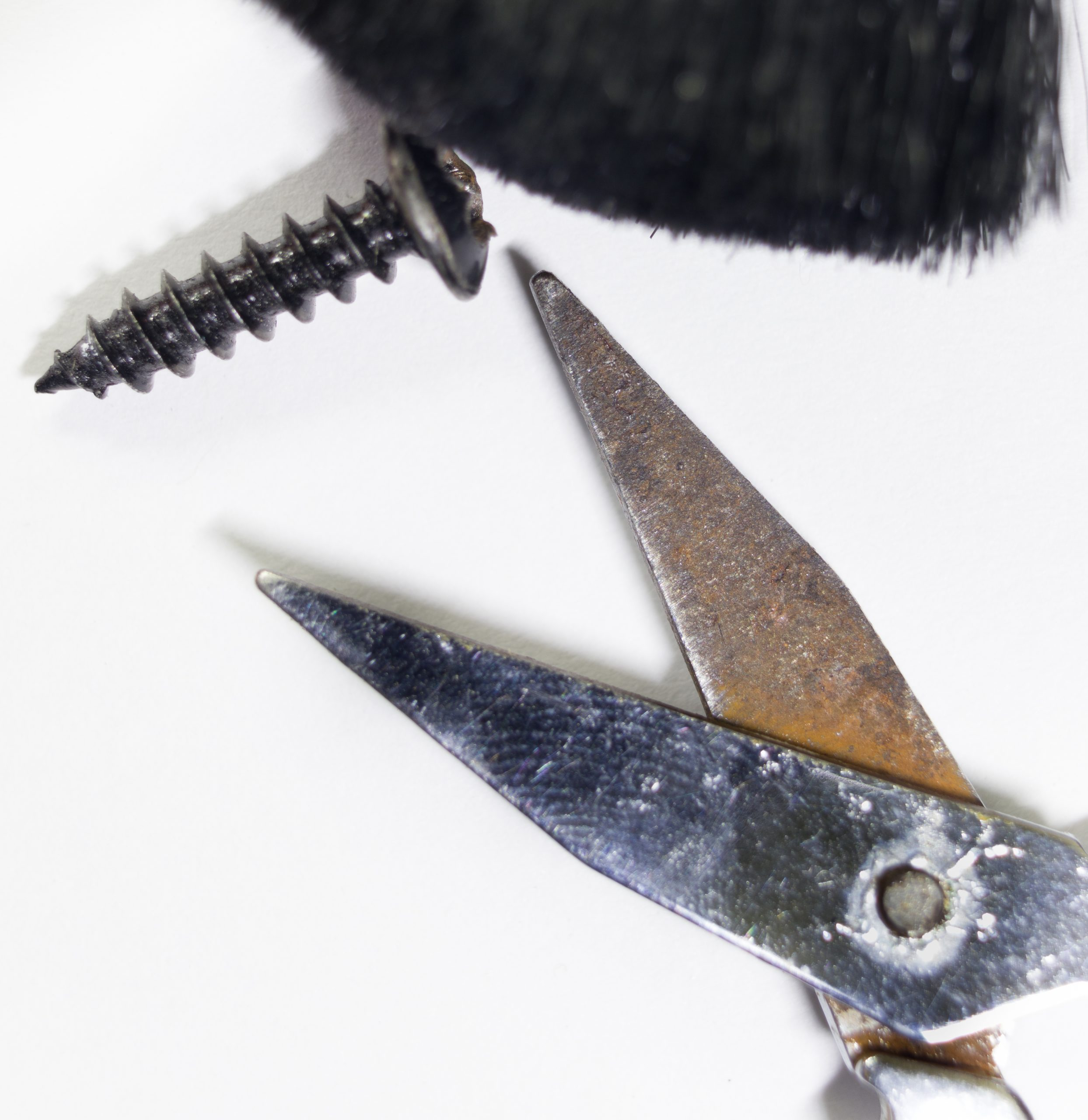 Portrait of a screw and a scissor