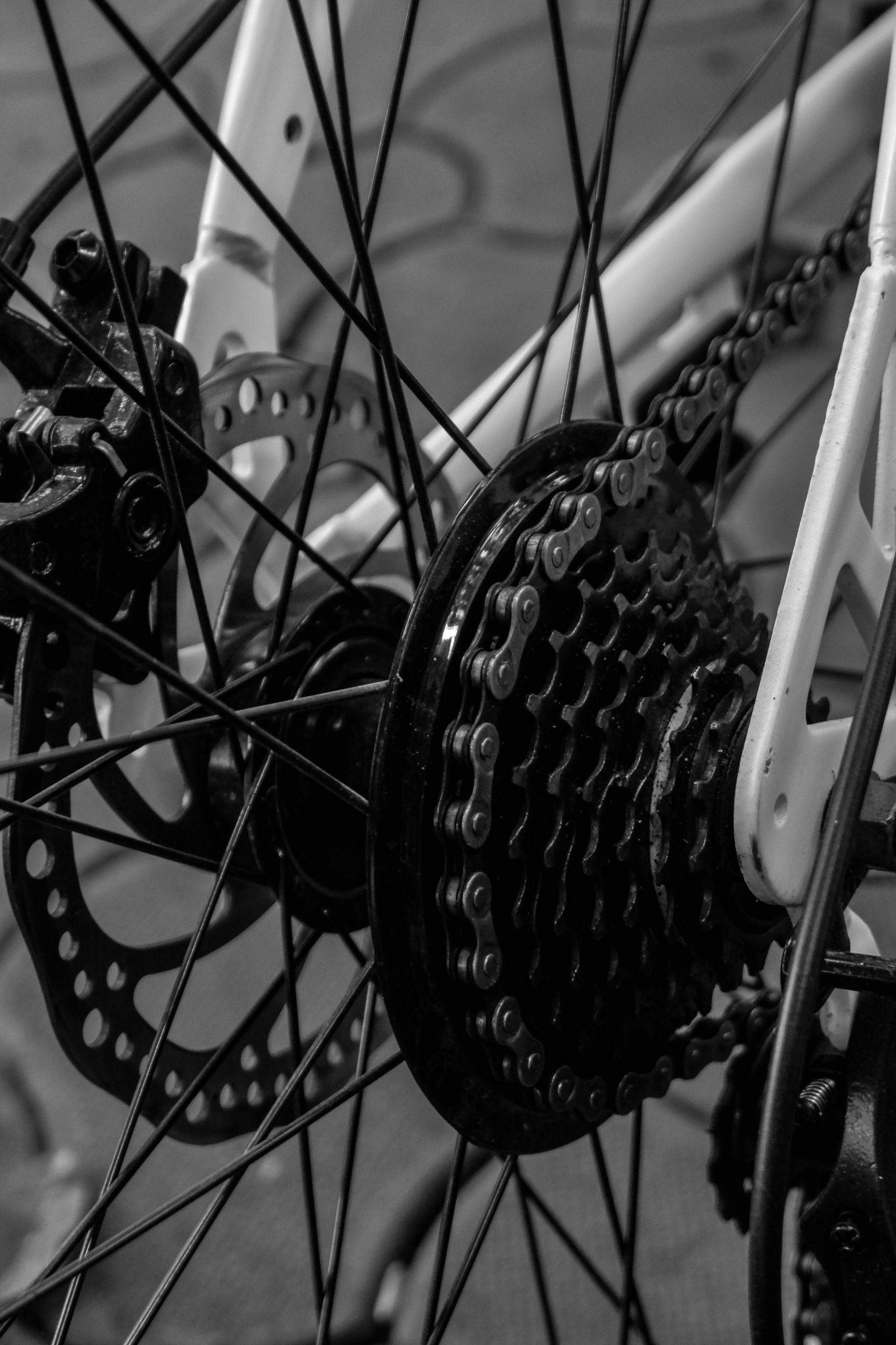 Cycle Gears and chain
