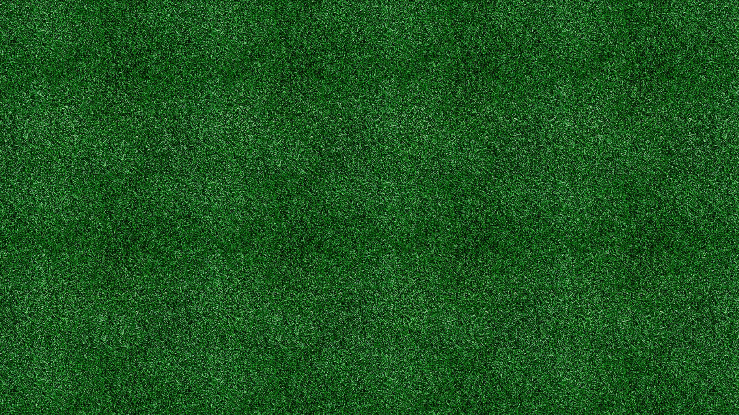 Dark green grass background