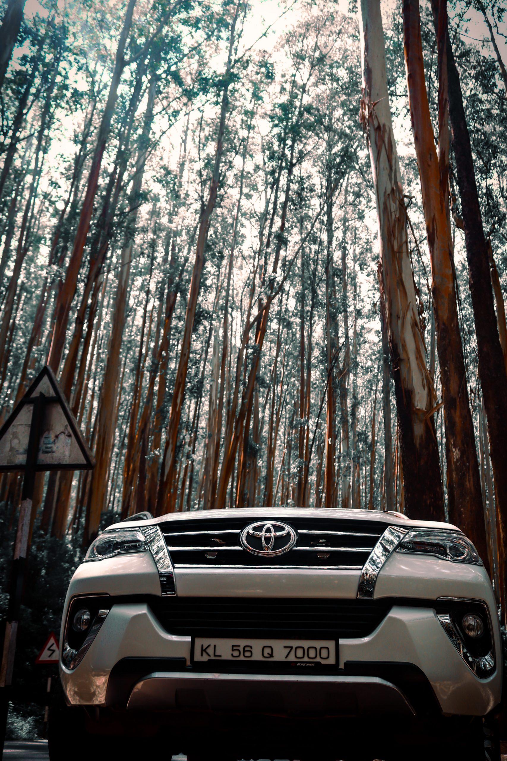 Fortuner car in a jungle