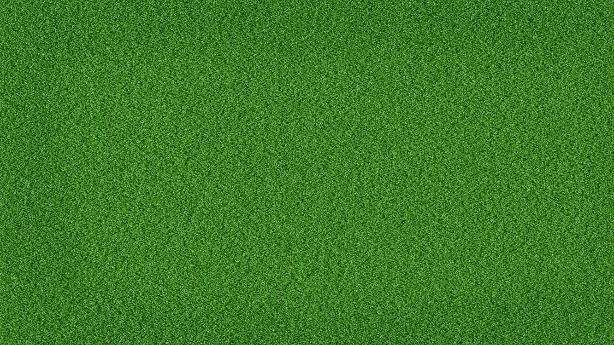 Green grass background wallpaper