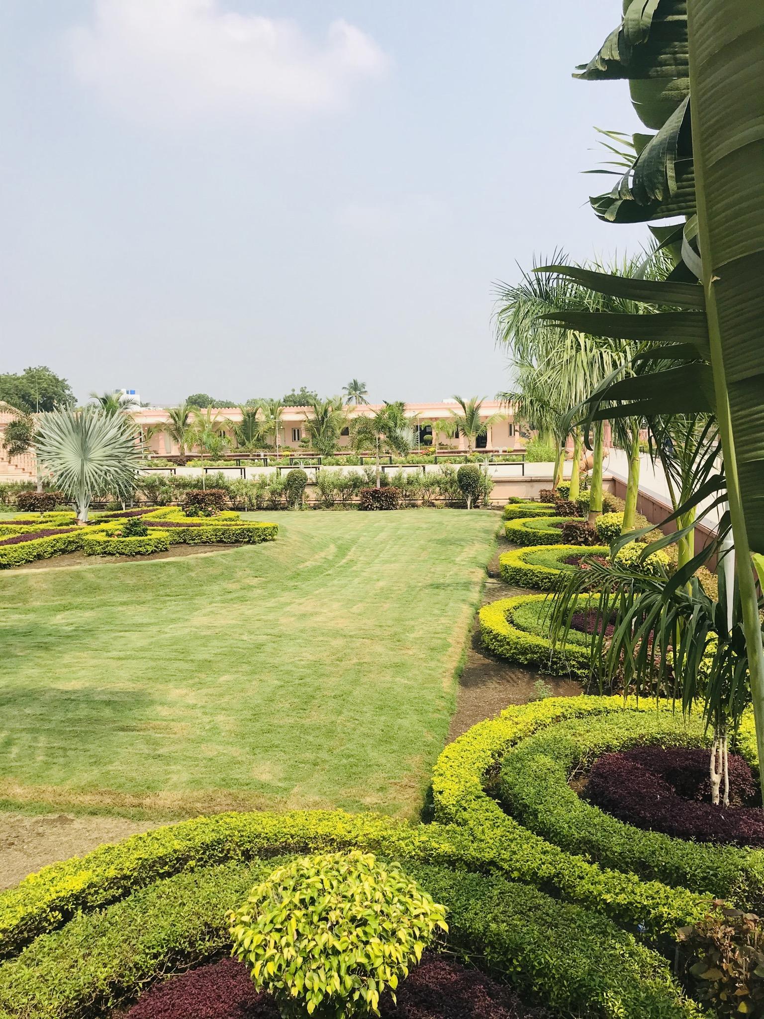Greenery of a garden
