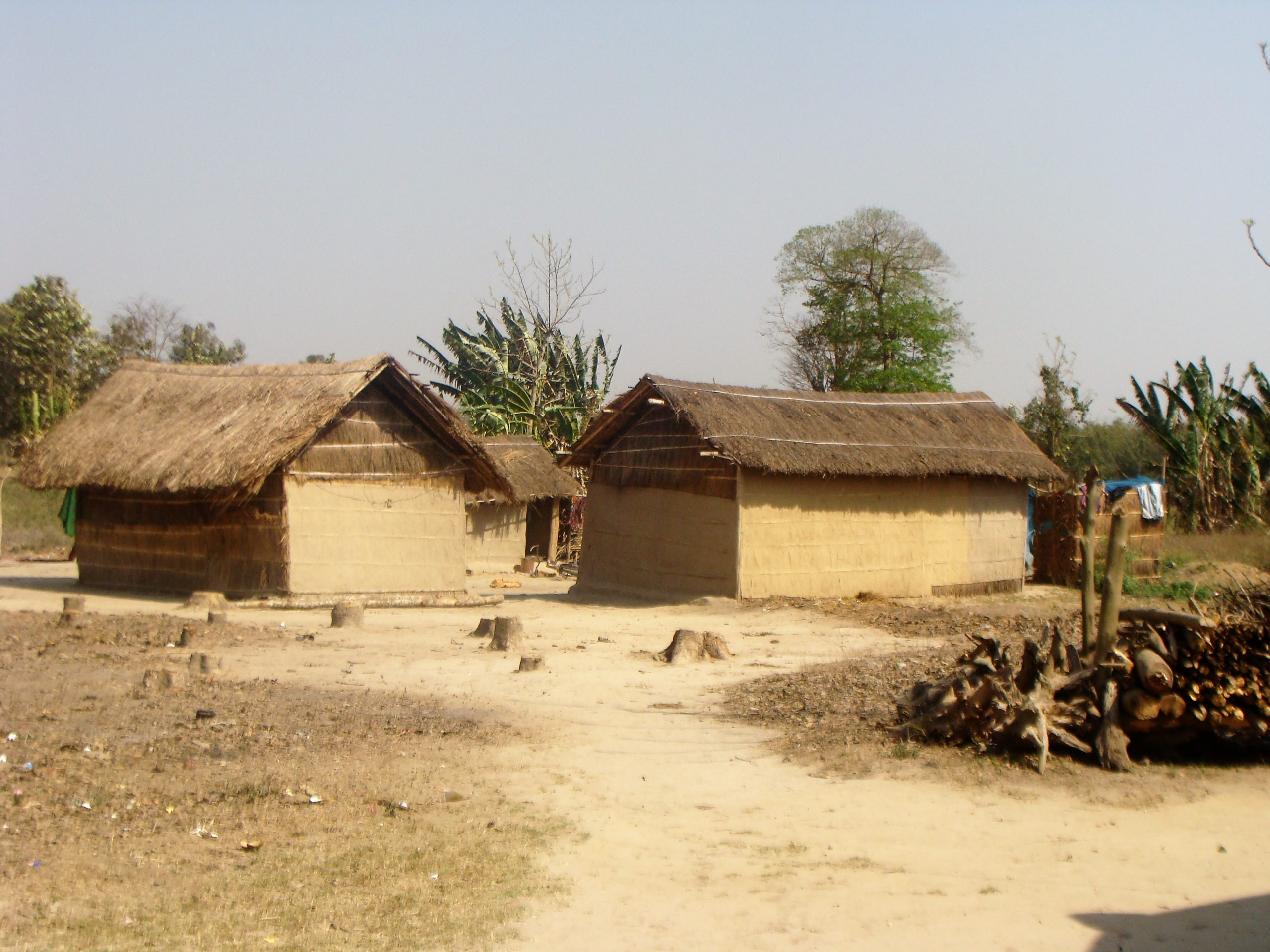 Huts in village