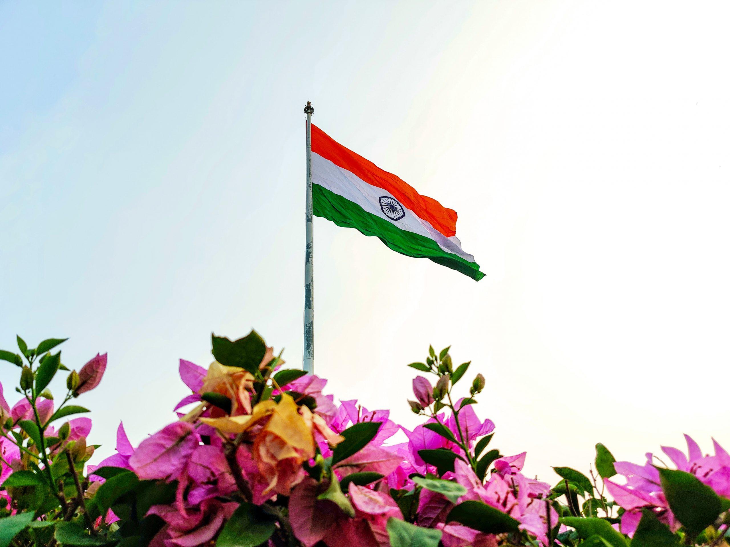 Indian flag in the garden