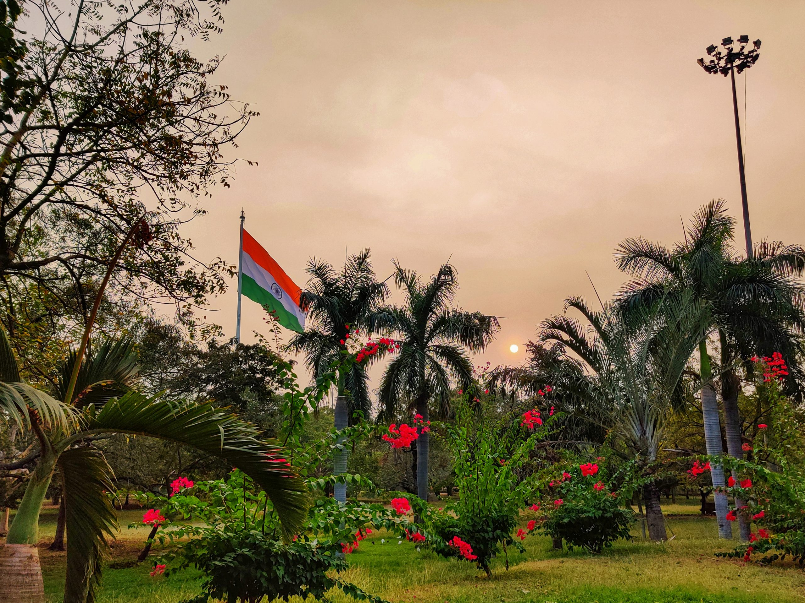 Indian flag in a park