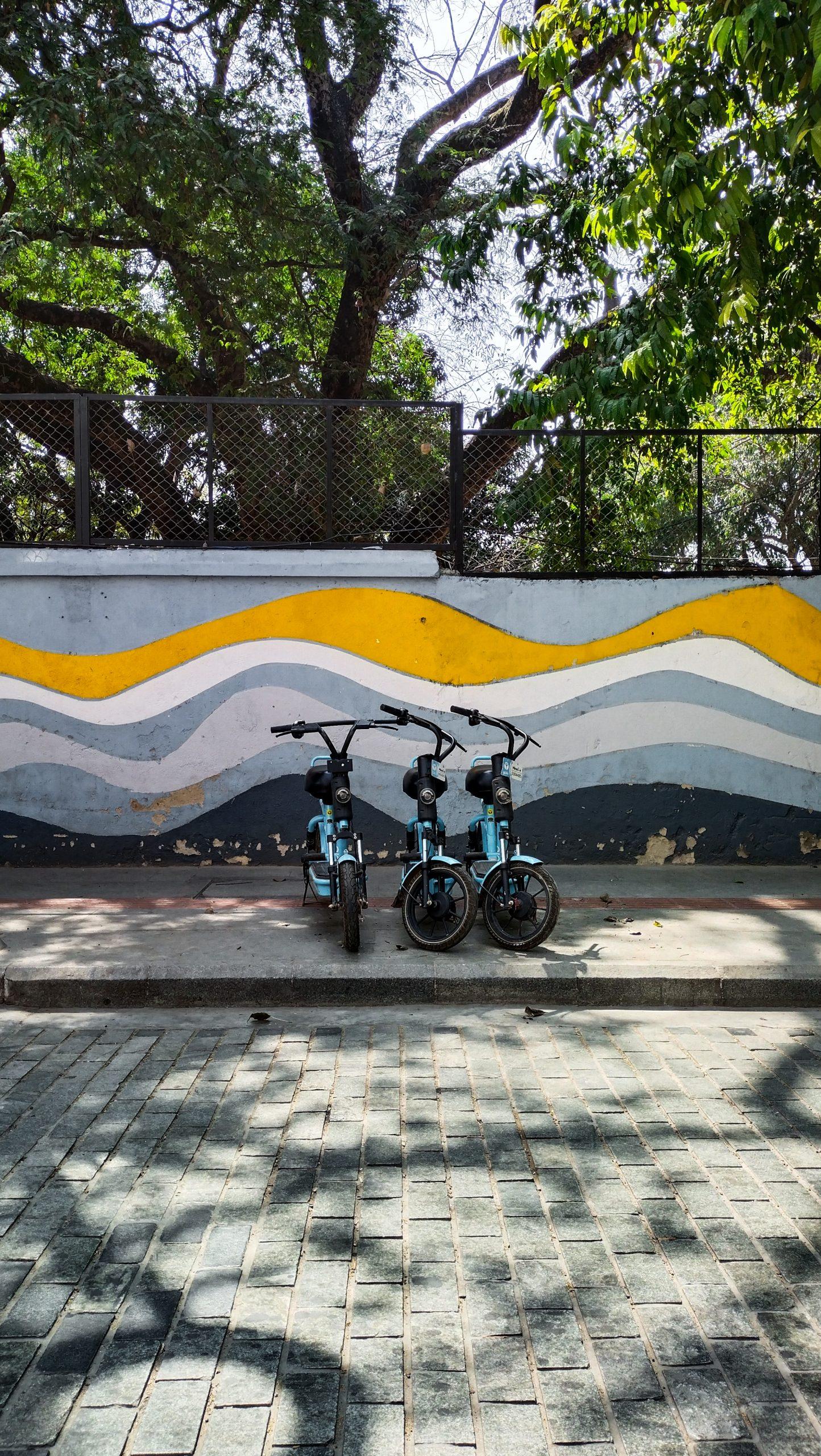 Kids bicycles on street