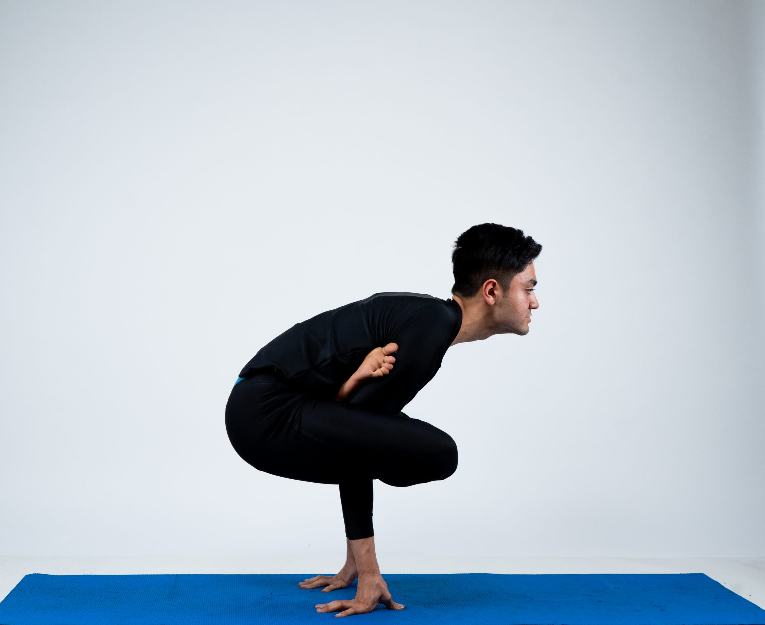 Kukkutasana (Cockerel Pose)