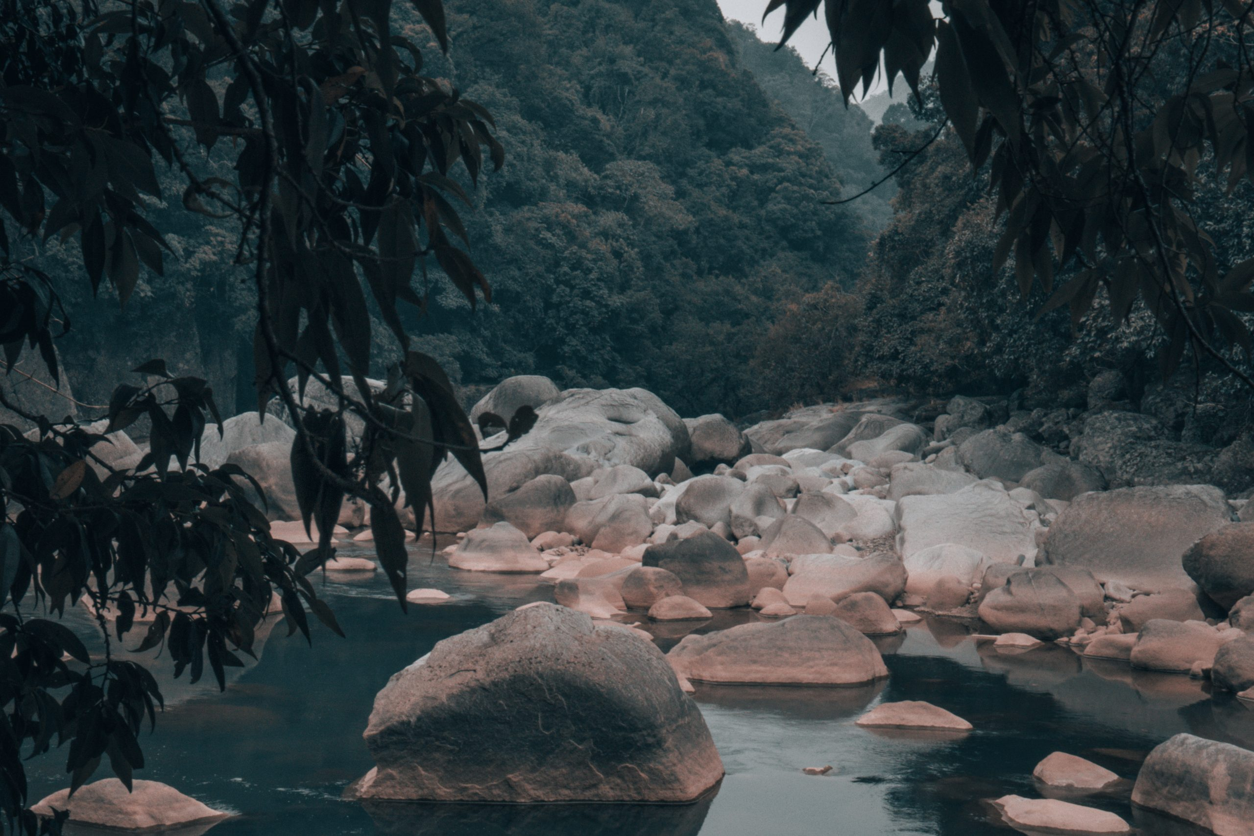 Rocks, water and jungle