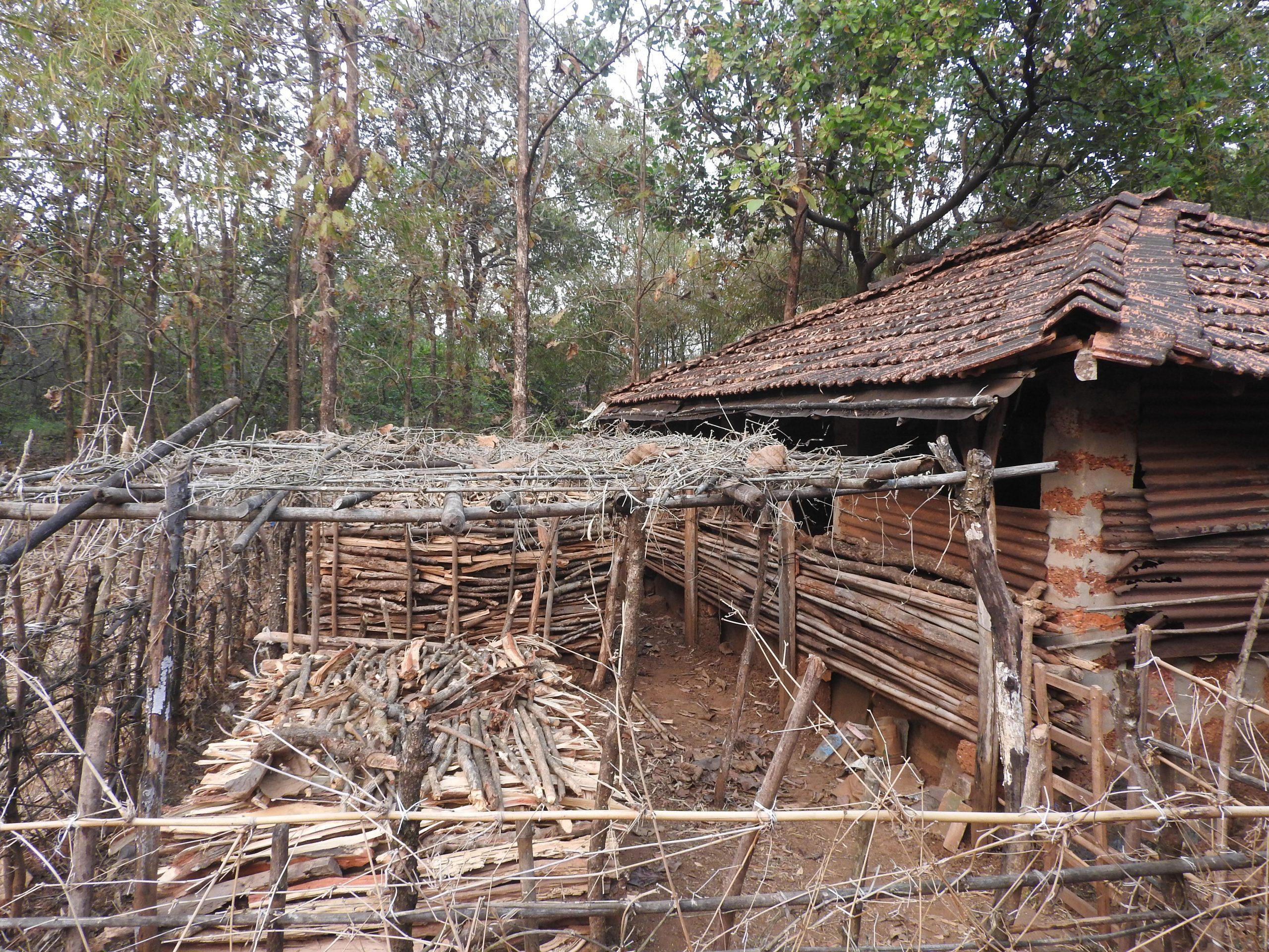 Wood shack and hut