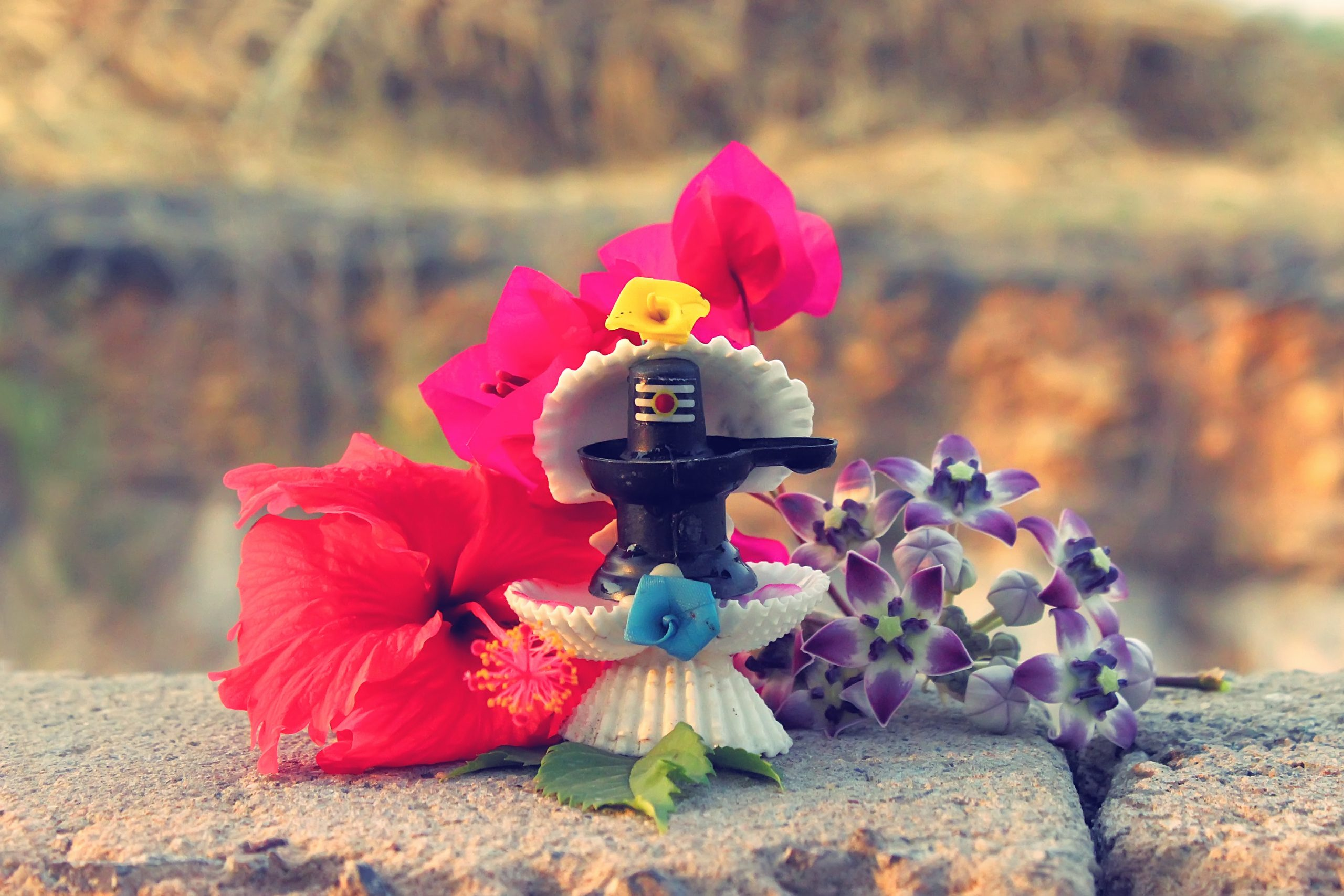 Shiv Ling with flowers