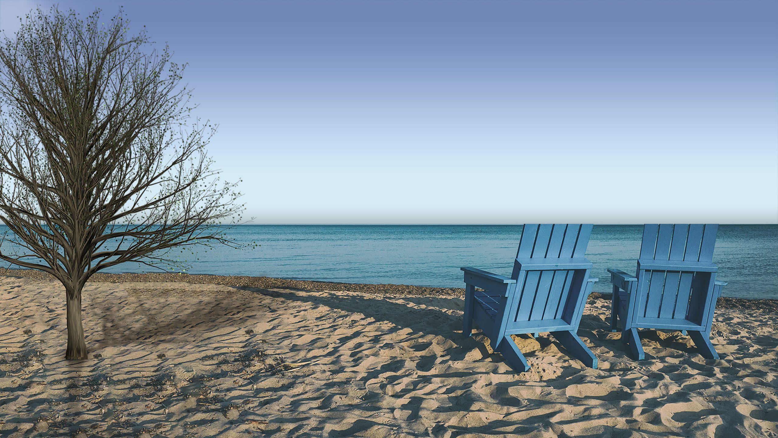 beachside-evening-tree-background
