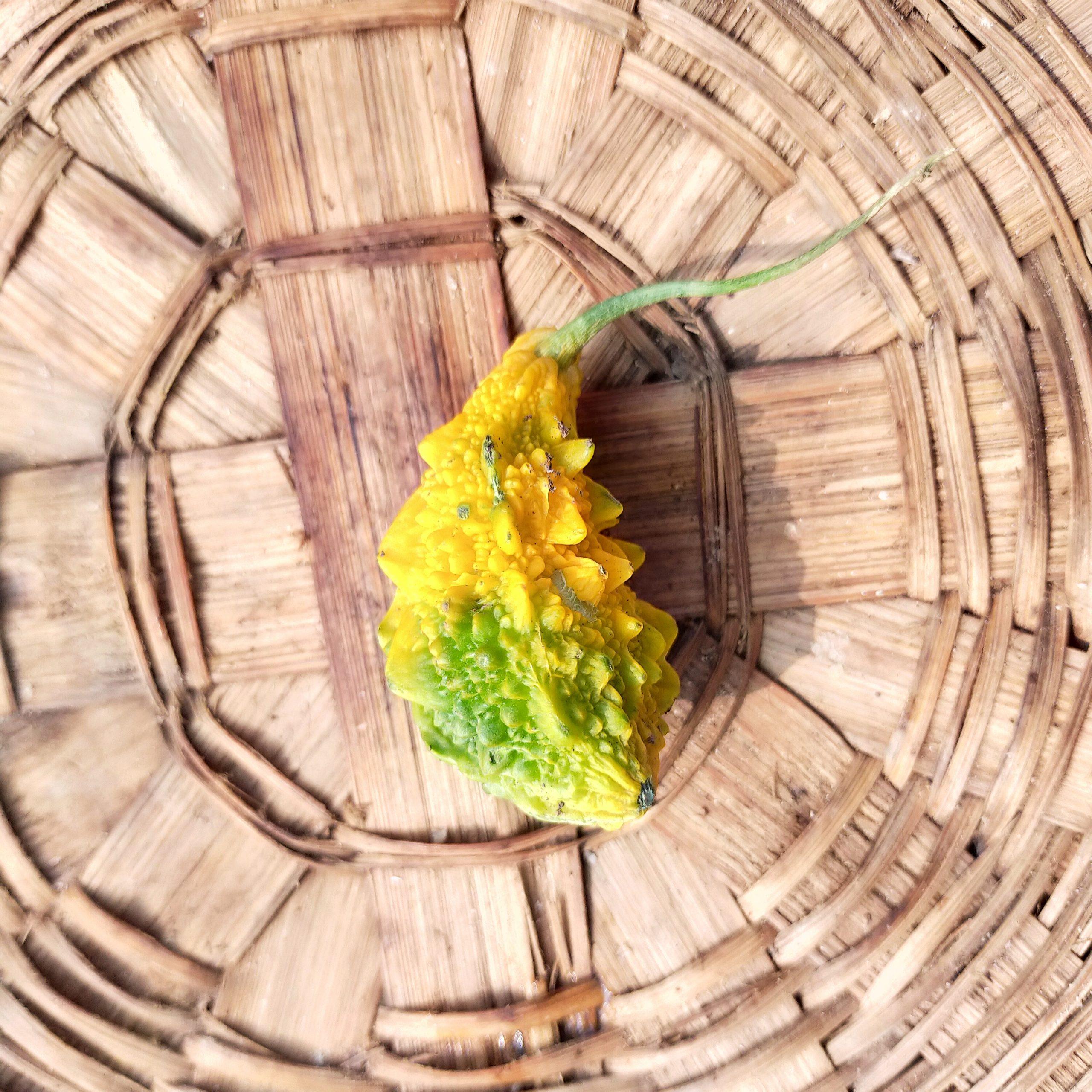 bitter gourd in basket