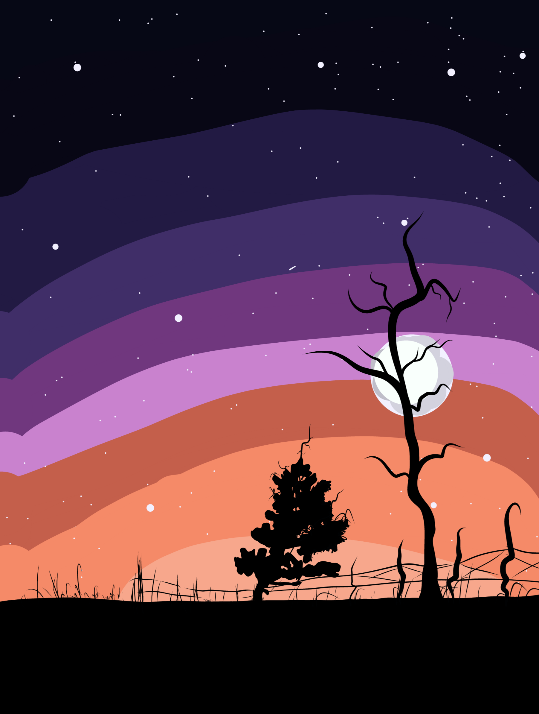 Illustration of a beautiful night scene