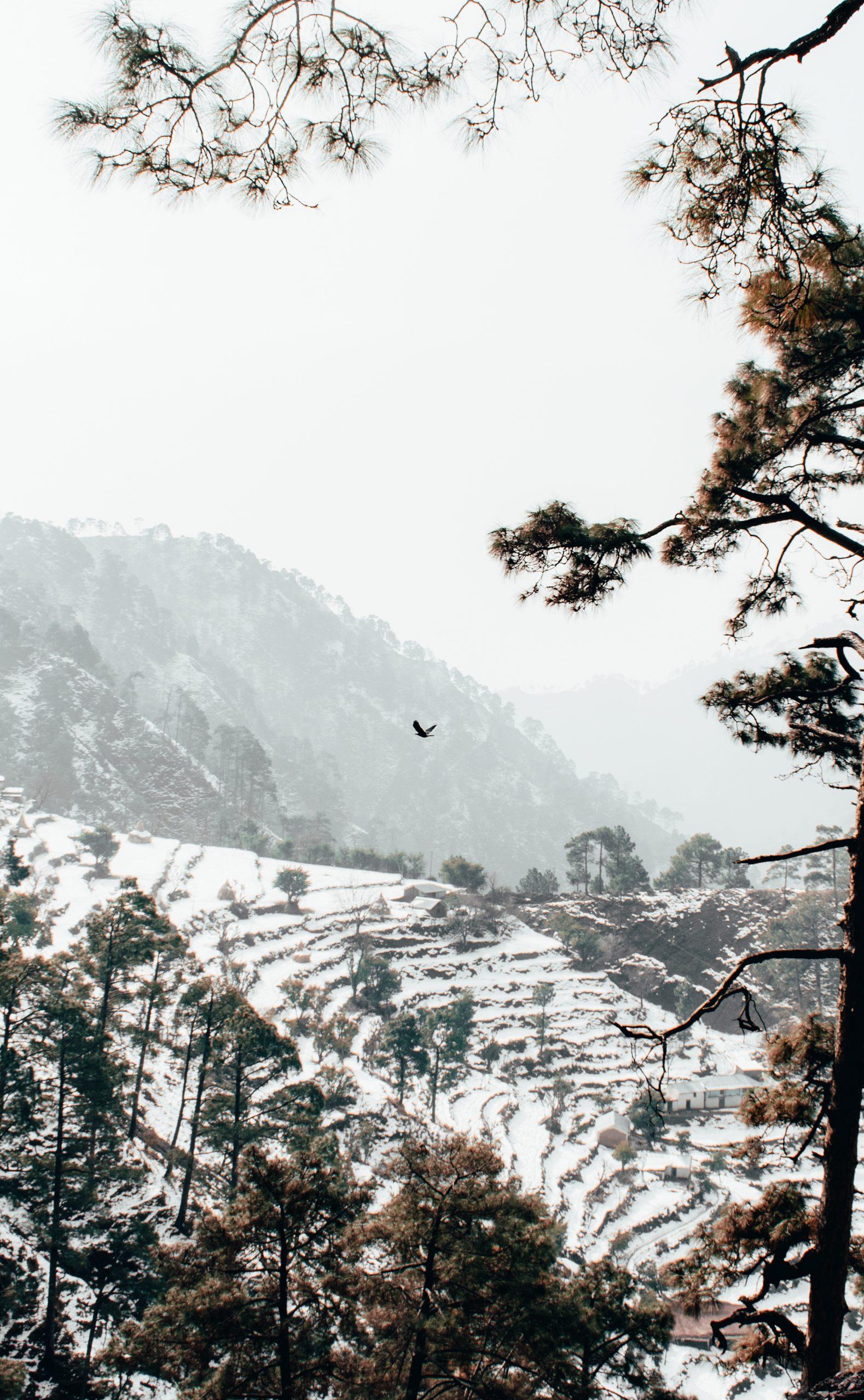 Snow fall on mountains